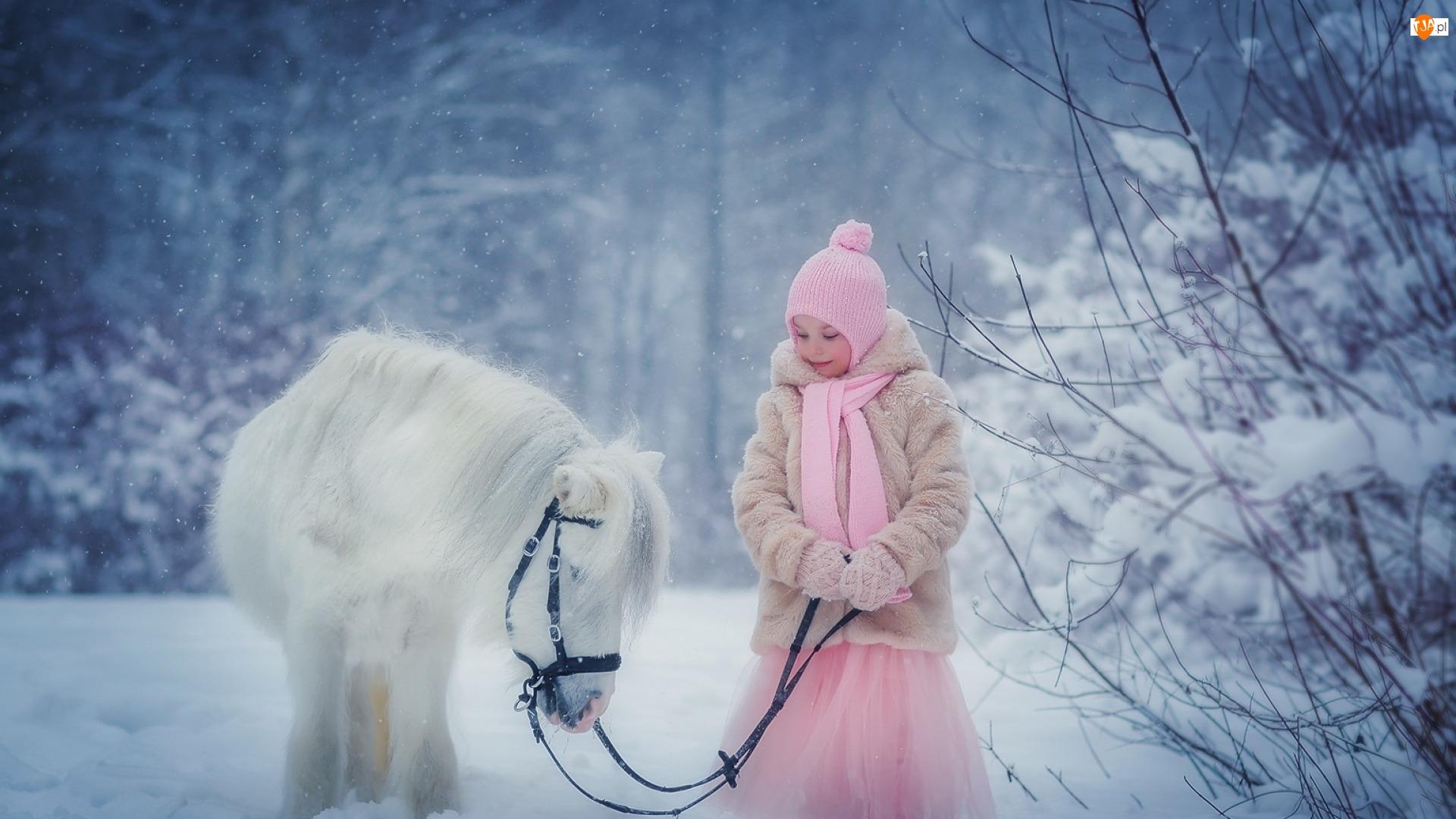 Zima, Kucyk, Dziewczynka, Biały