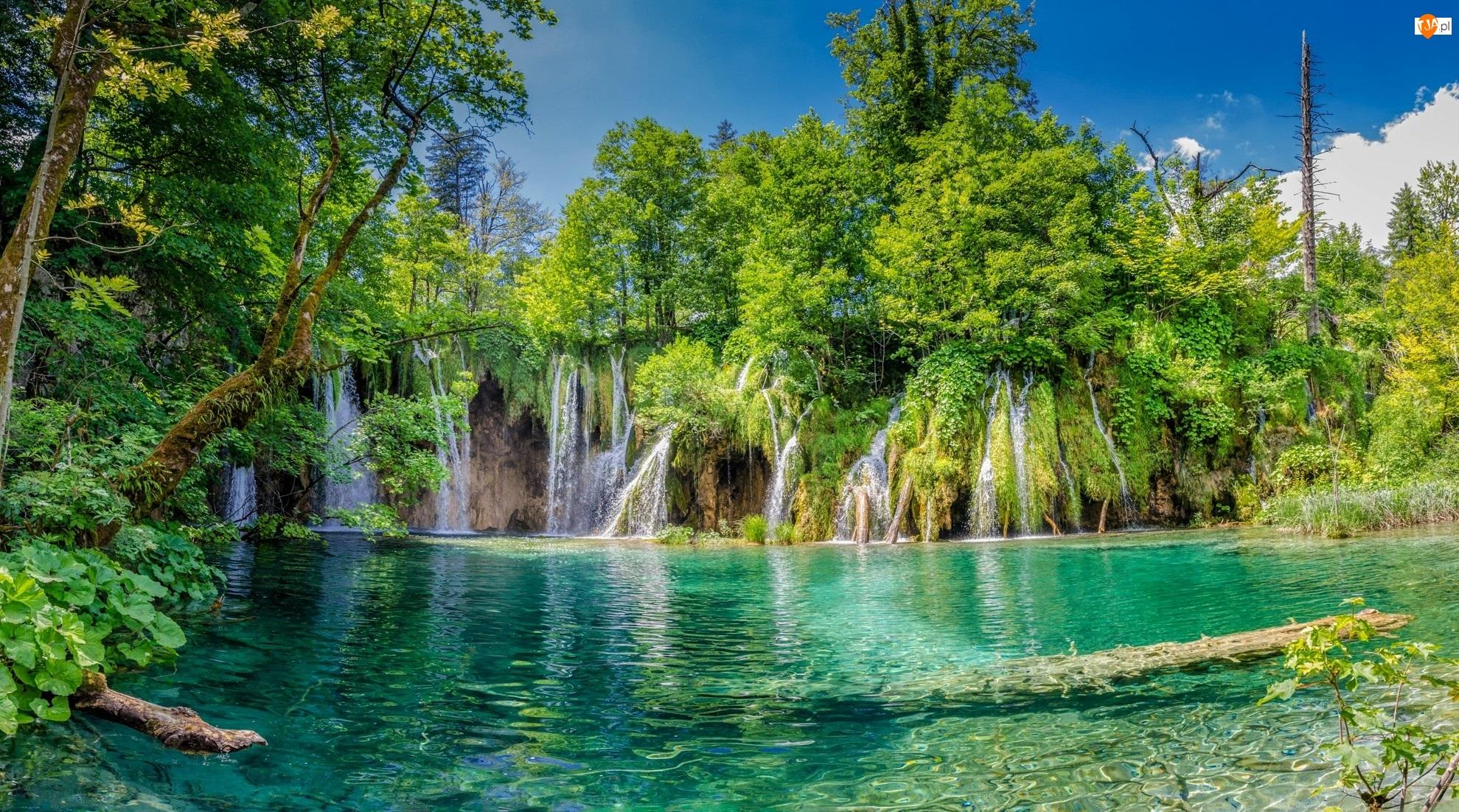 Plitvice, Drzewa, Chorwacja, Wodospad, Park Narodowy Jezior Plitwickich, Jezioro