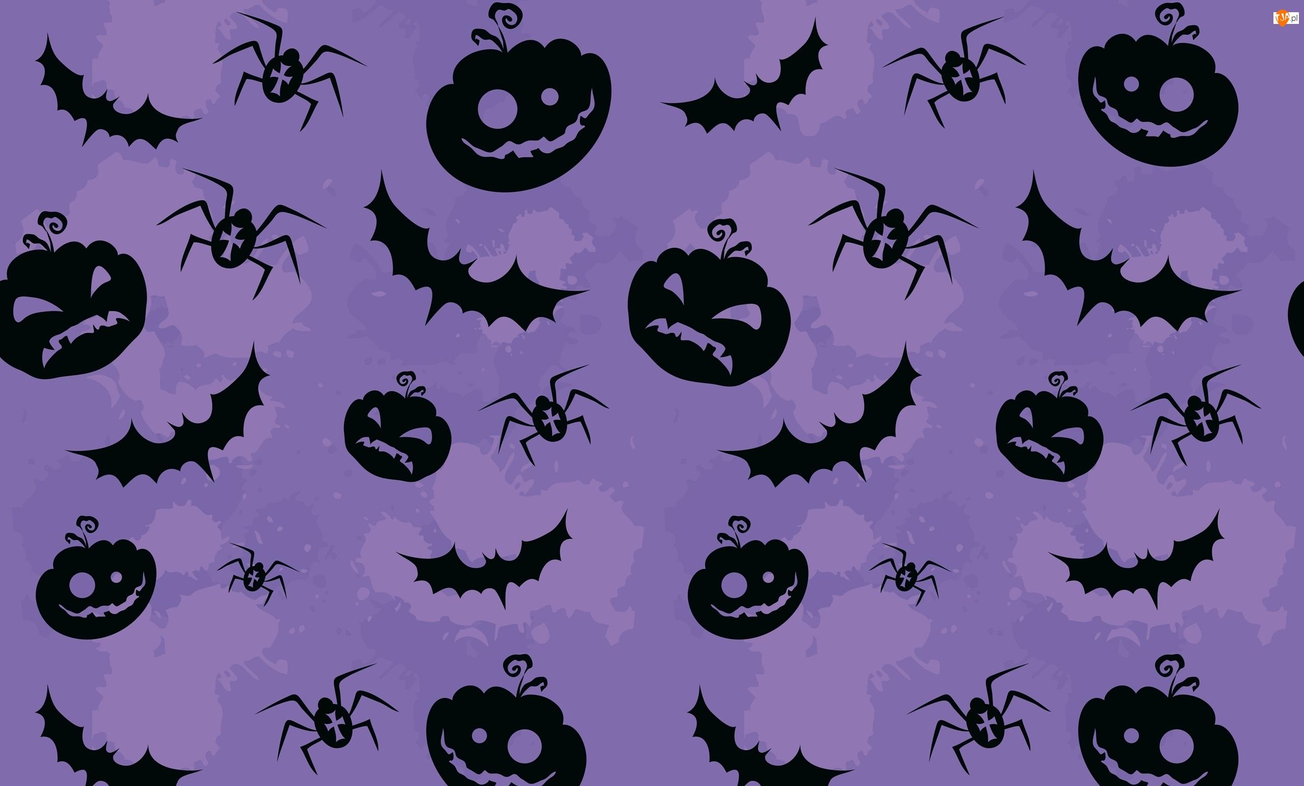 Pająki, Tekstura, Dynie, Halloween, Nietoperze