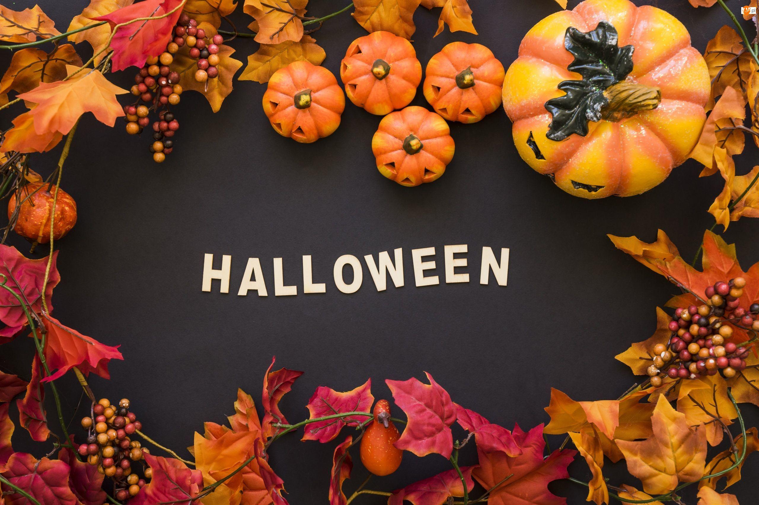 Liście, Halloween, Dynie