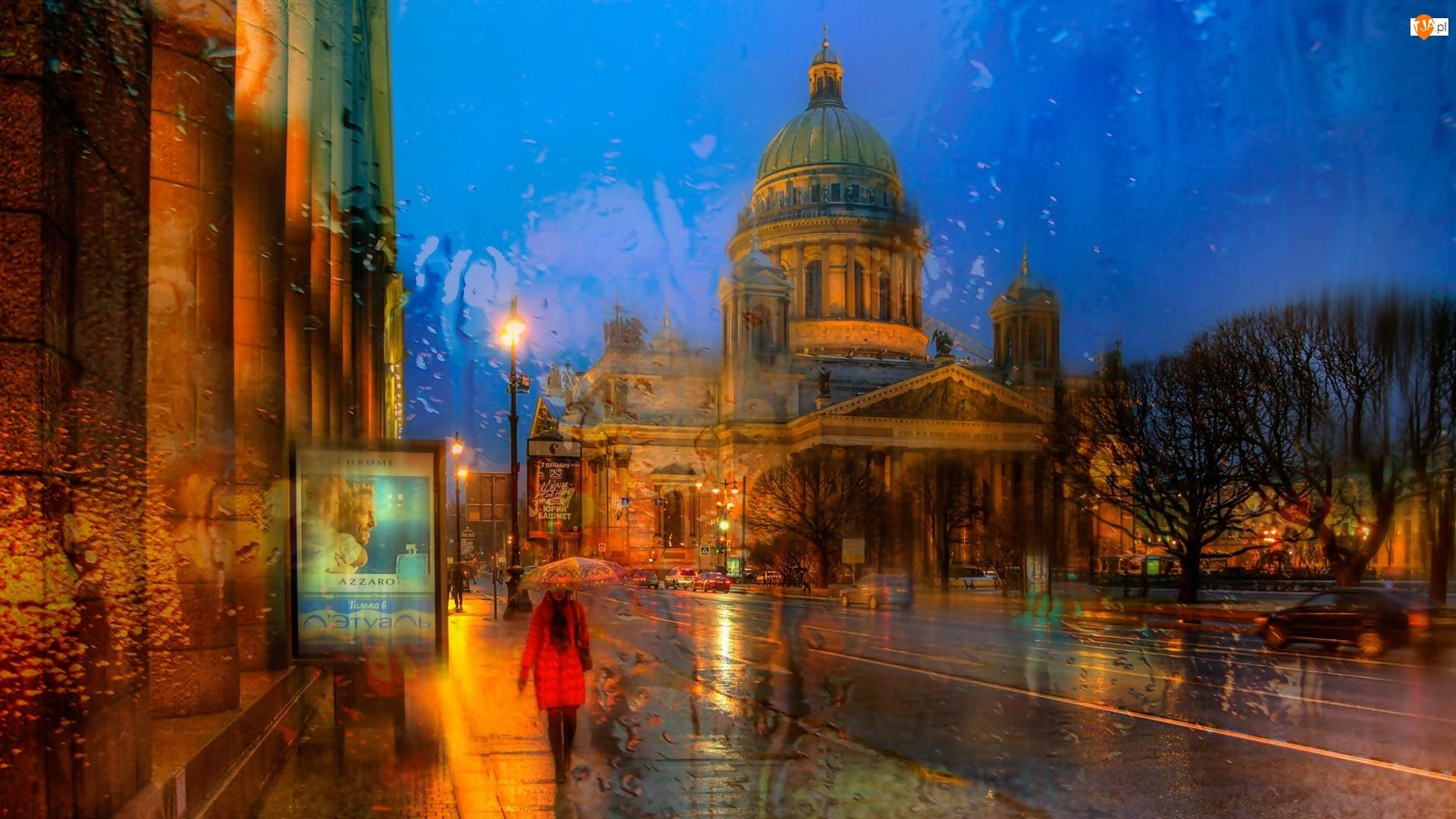 Kobieta, Ulica, Petersburg, Rosja, Parasol, Deszcz, Budynki