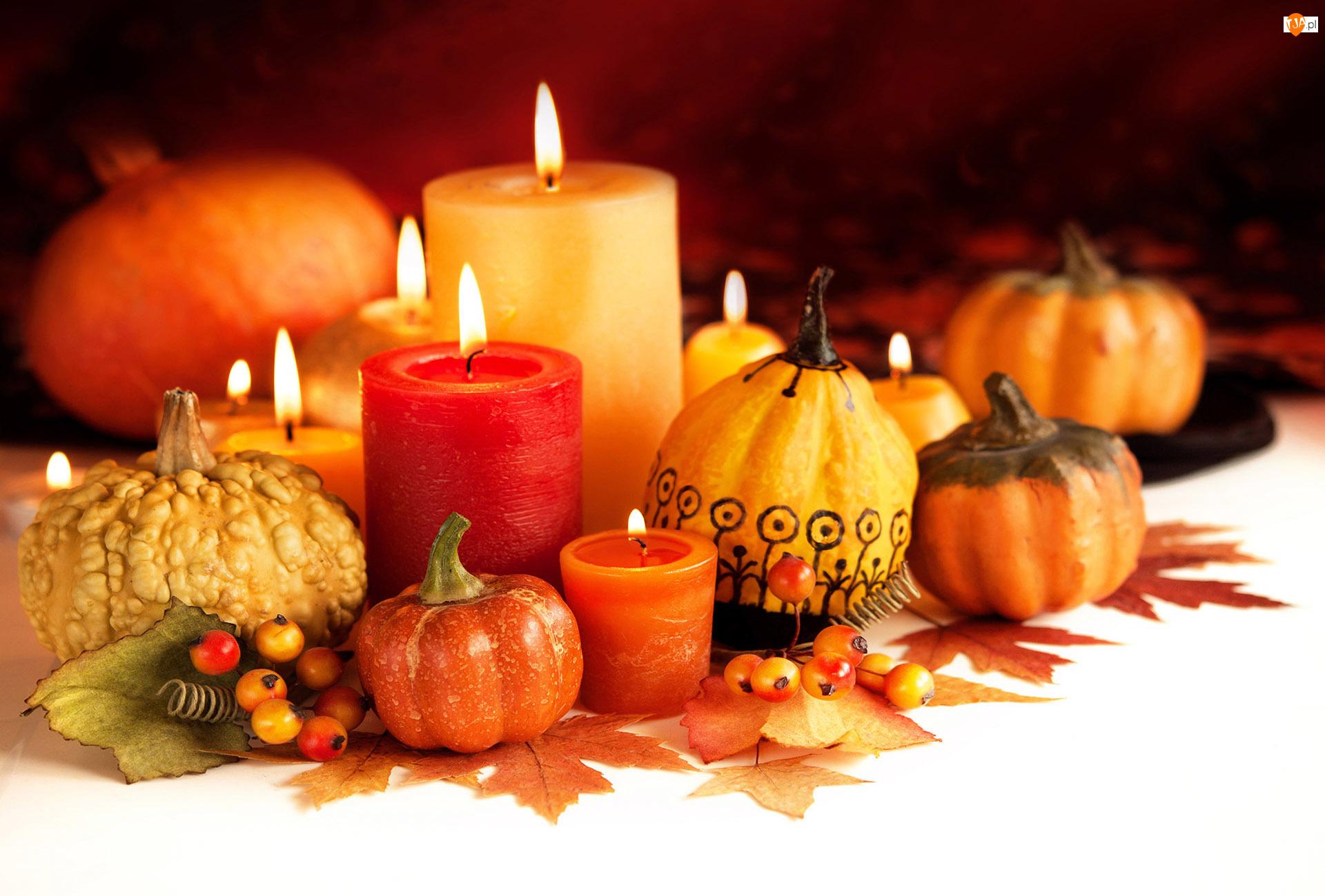 Halloween, Kompozycja, Świece, Dynie