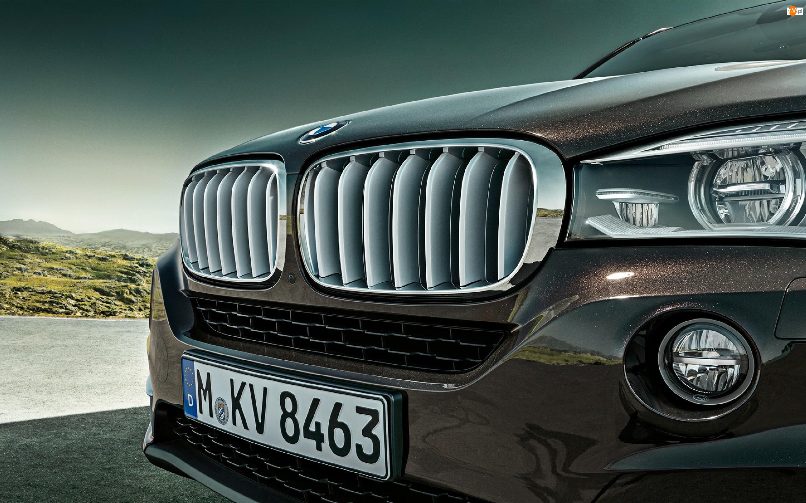 BMW X5 E70, Grill