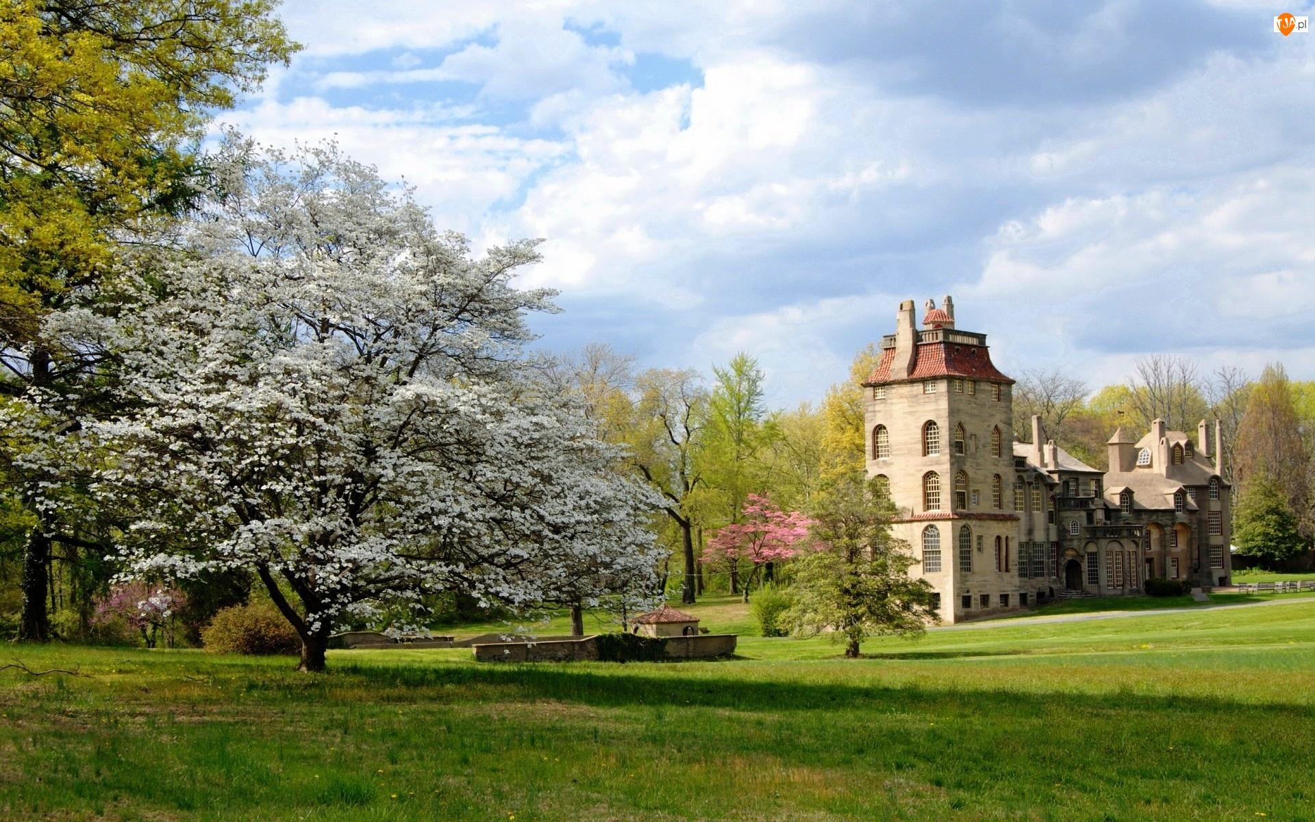 Drzewa, Muzeum, Stan Pensylwania, Fonthill Castle, Stany Zjednoczone