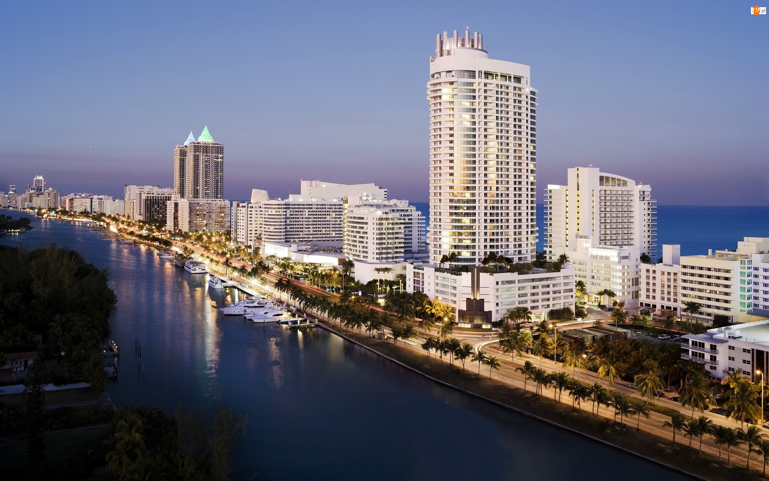 Ocean, Palmy, Miami, Miasto, USA, Panorama, Jachty