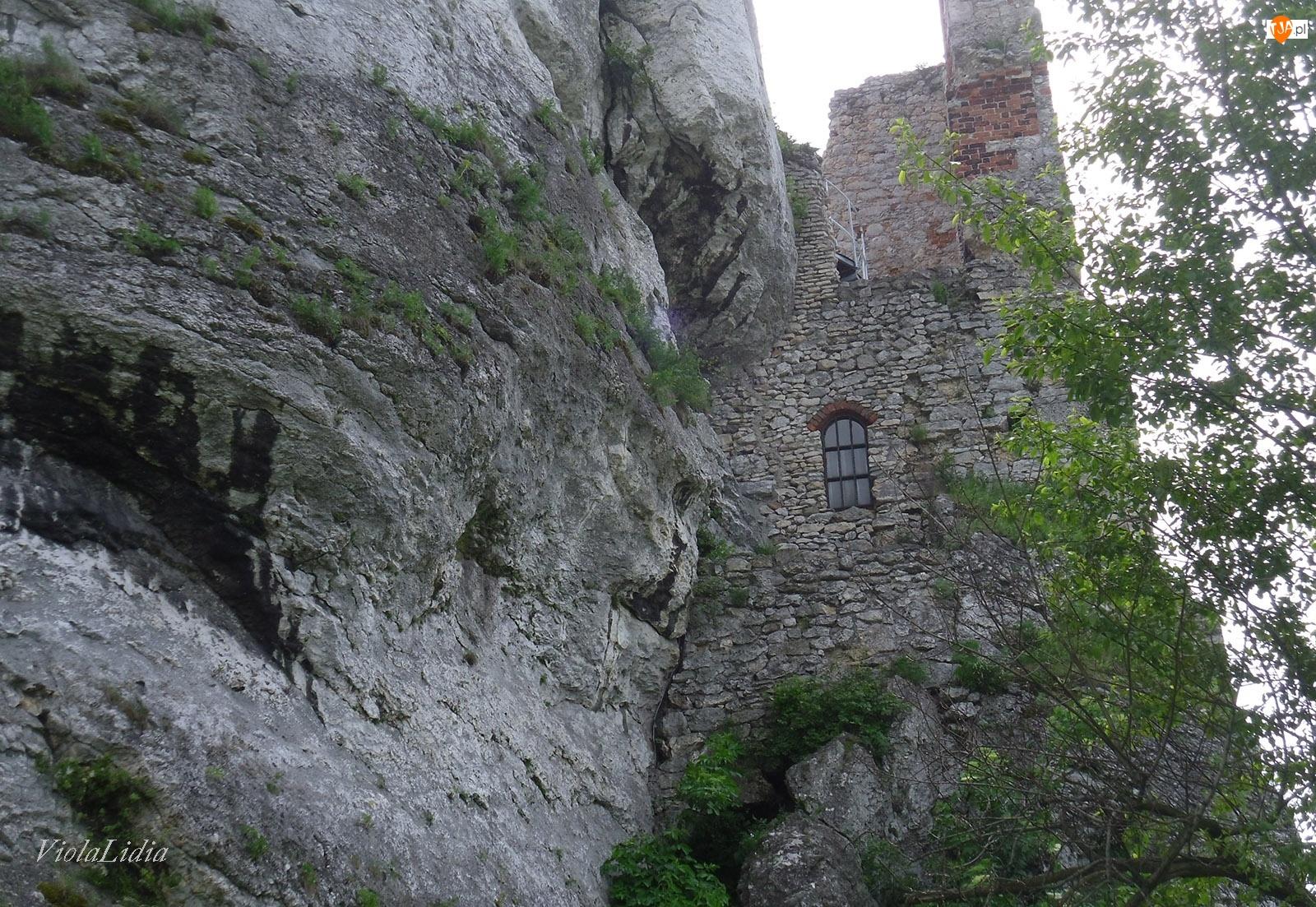 Ruiny, Zamek Ogrodzieniec, Śląskie, Wieś Podzamcze, Polska
