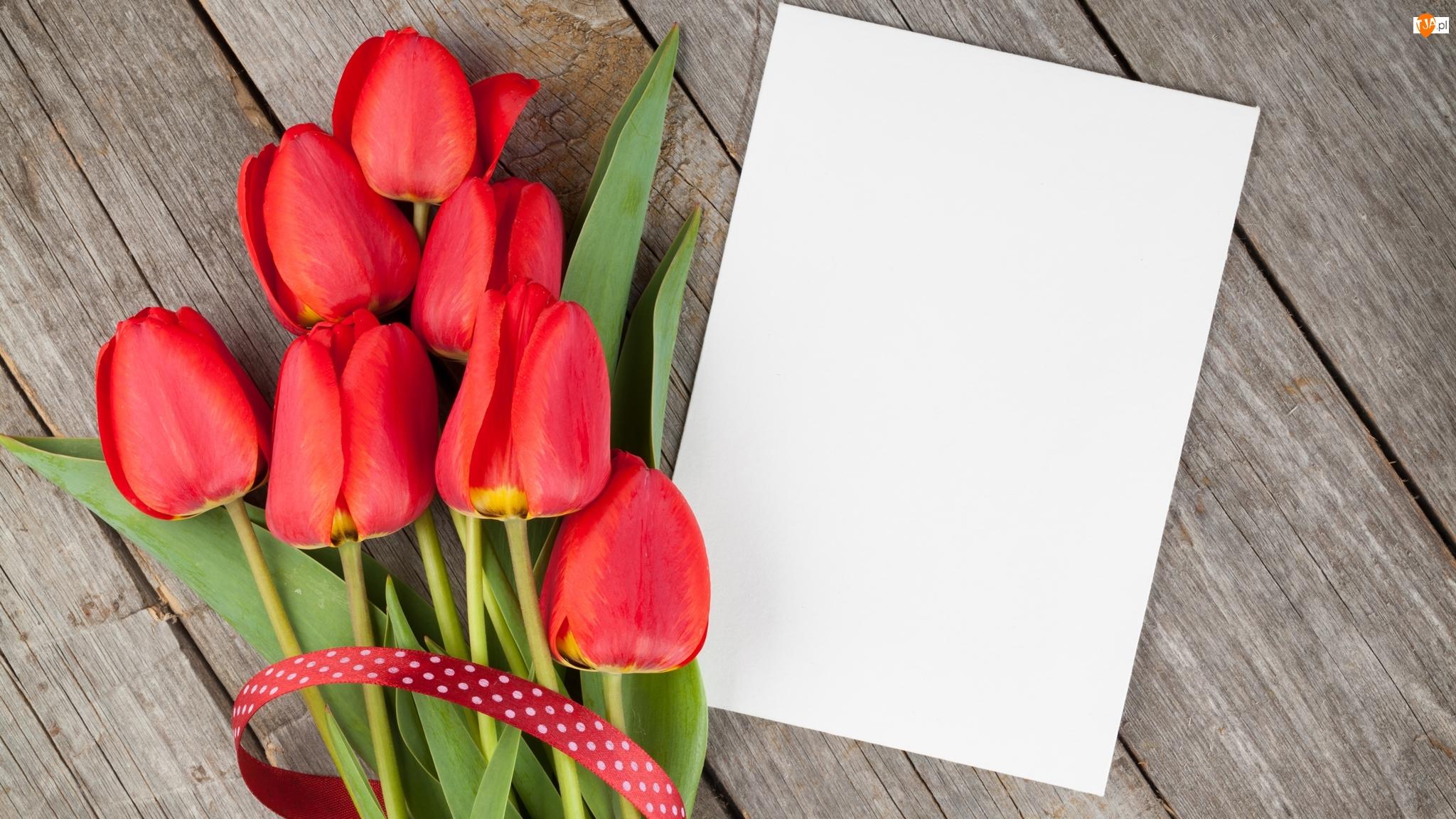 Kartka, Kwiaty, Tulipany
