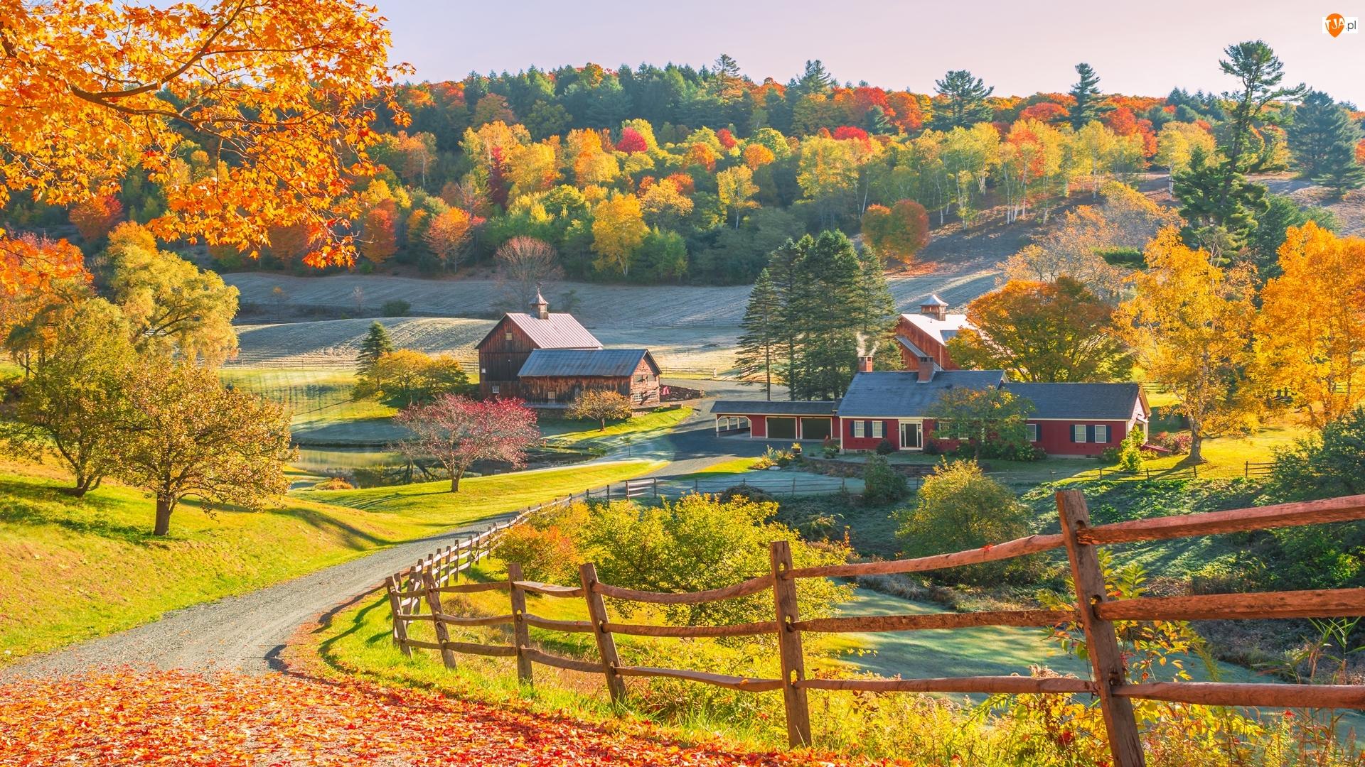 Stan Vermont, Nowa Anglia, Drzewa, Stany Zjednoczone, Droga, Dom, Jesień