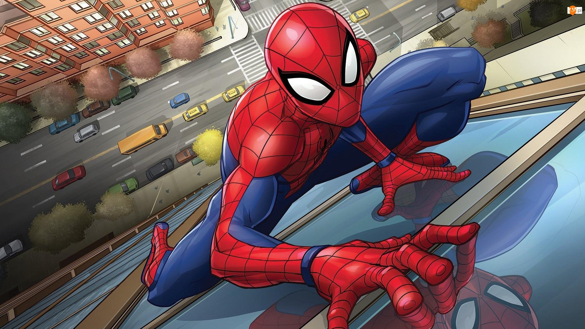 Spider Man, Film