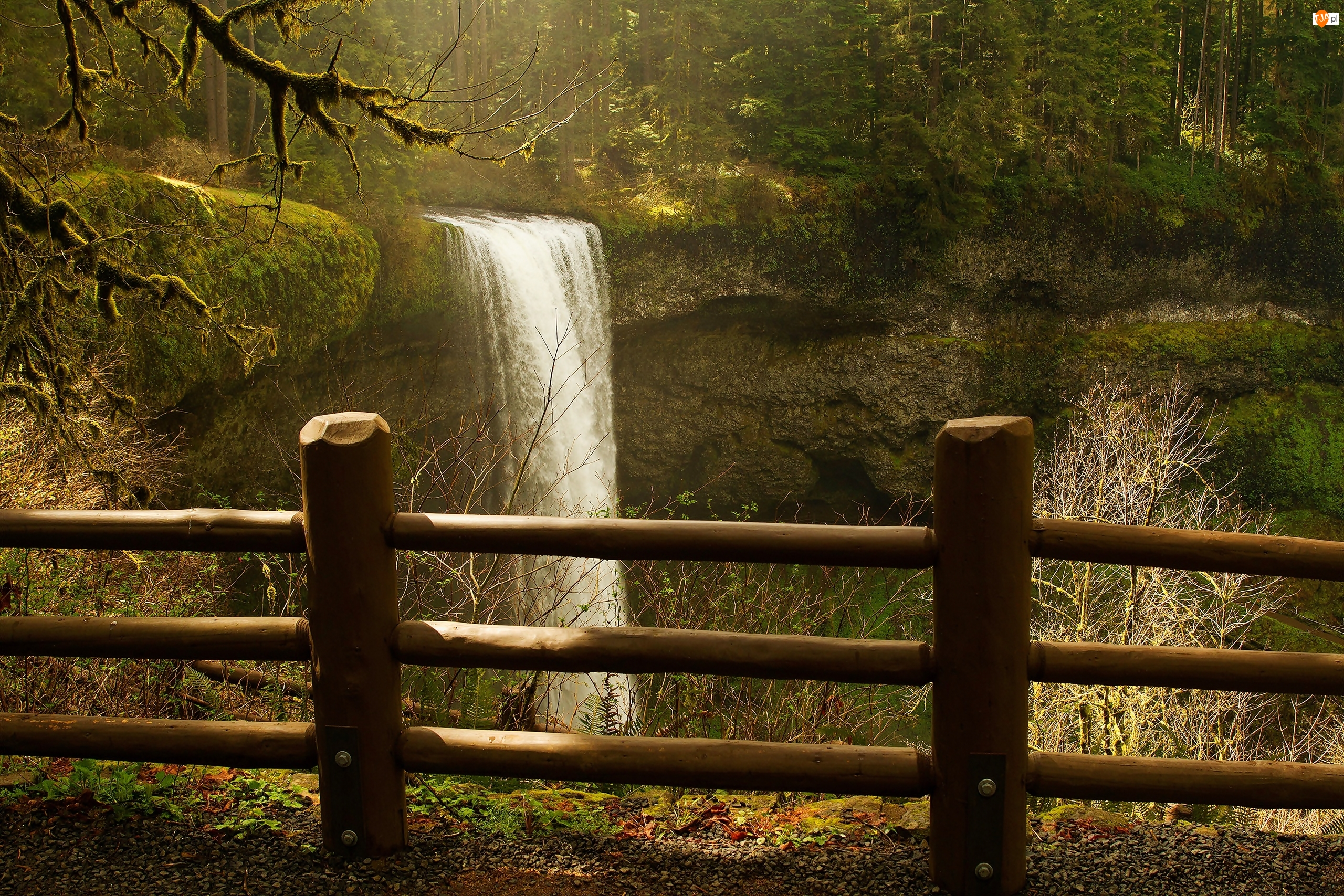 Stan Oregon, Stany Zjednoczone, Wodospad South Falls, Płot, Park Stanowy Silver Falls, Las