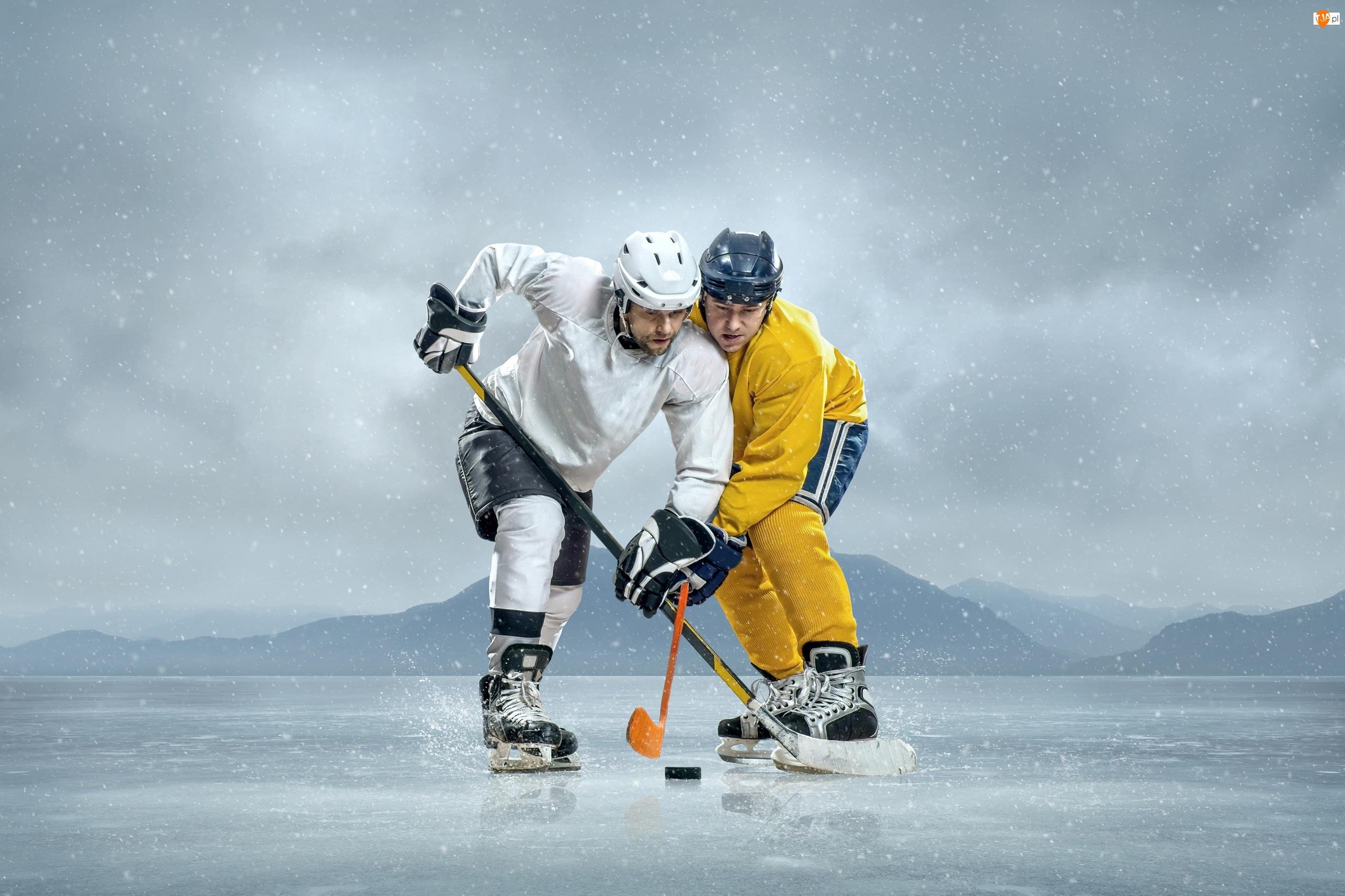 Hokeiści, Hokej