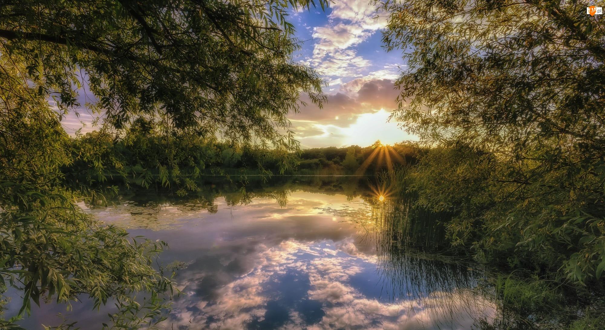 Stupino, Park, Zachód słońca, Rosja, Drzewa, Las, Jezioro