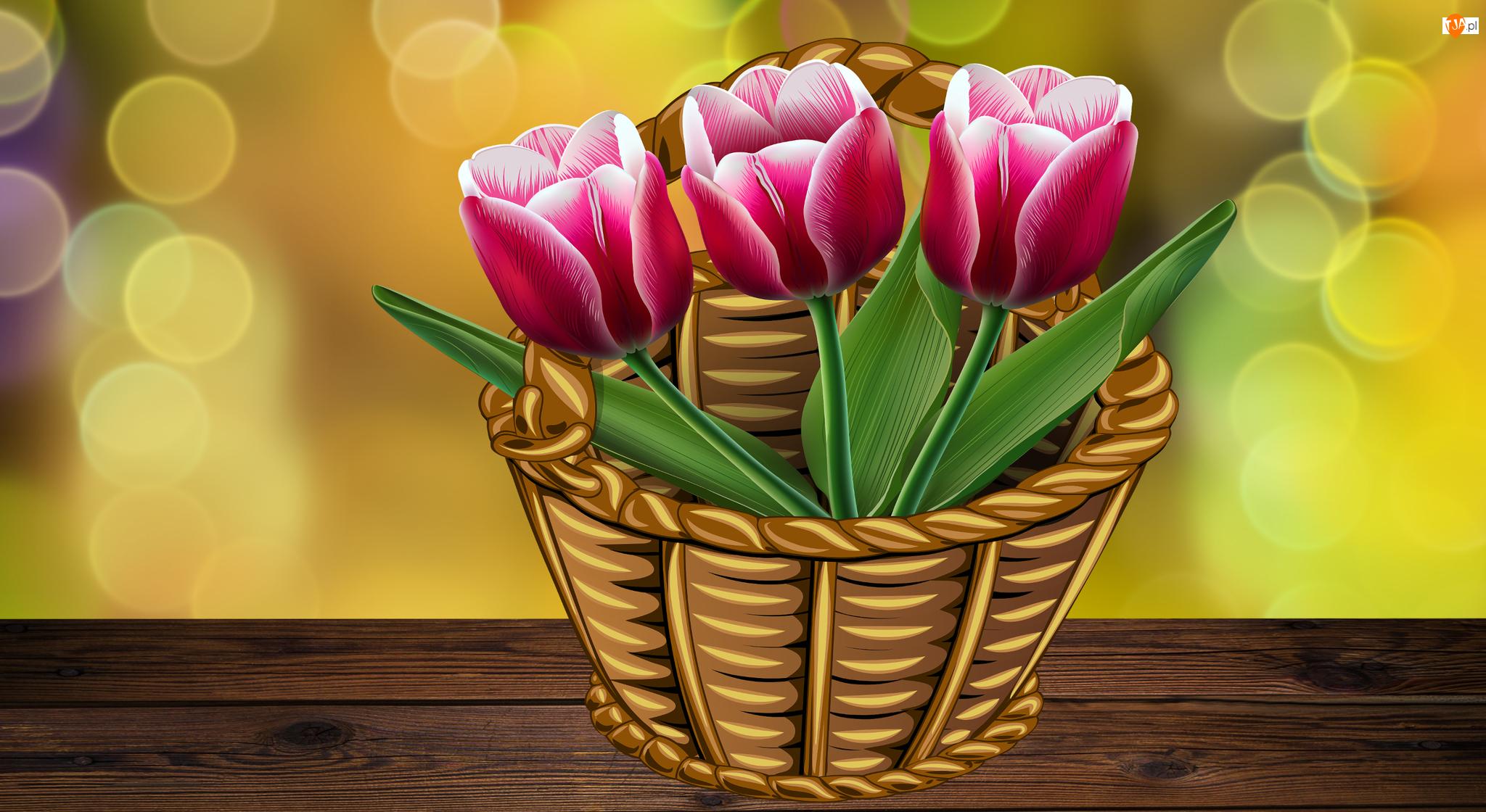 Tulipany, Kosz