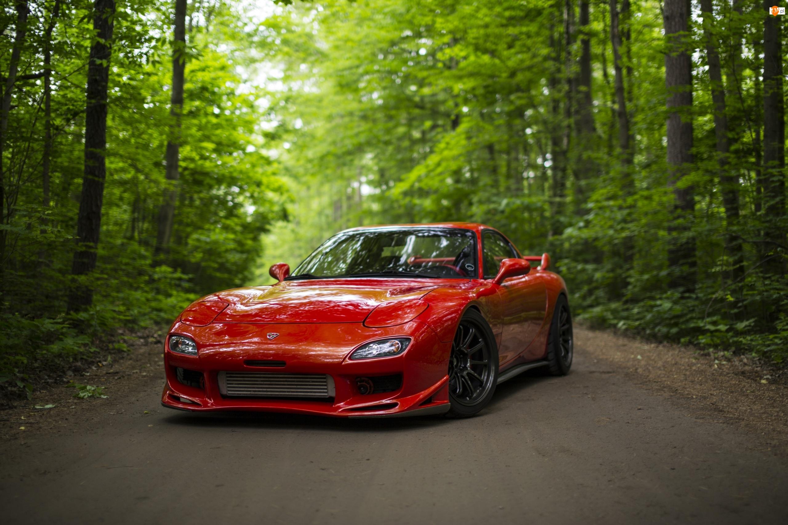 Drzewa, Czerwona, Mazda RX-7, Droga