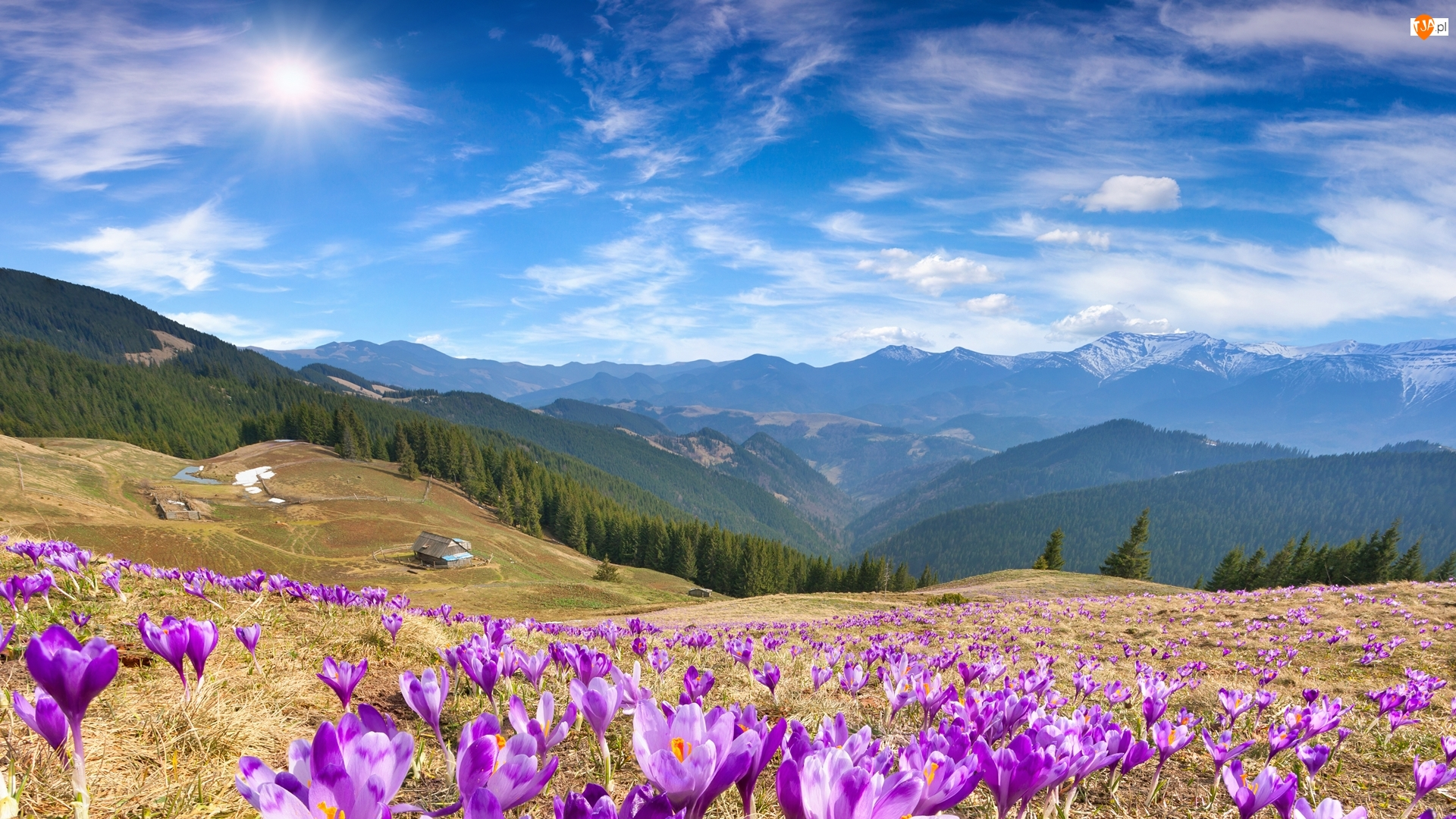 Polana, Łąka, Chmury, Góry, Promienie słońca, Domy, Krokusy