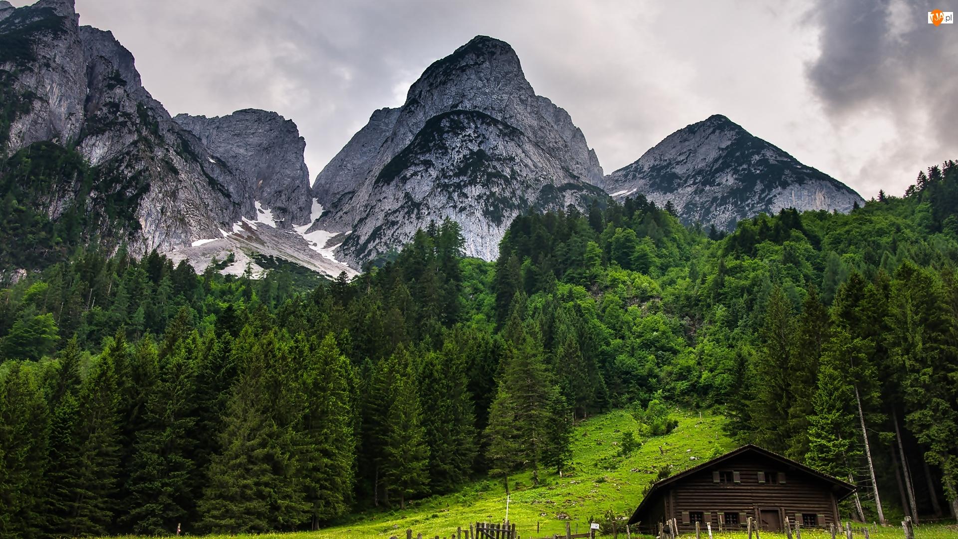 Miejscowość Gosau, Austria, Las, Dom, Góry Dachstein, Drewniany