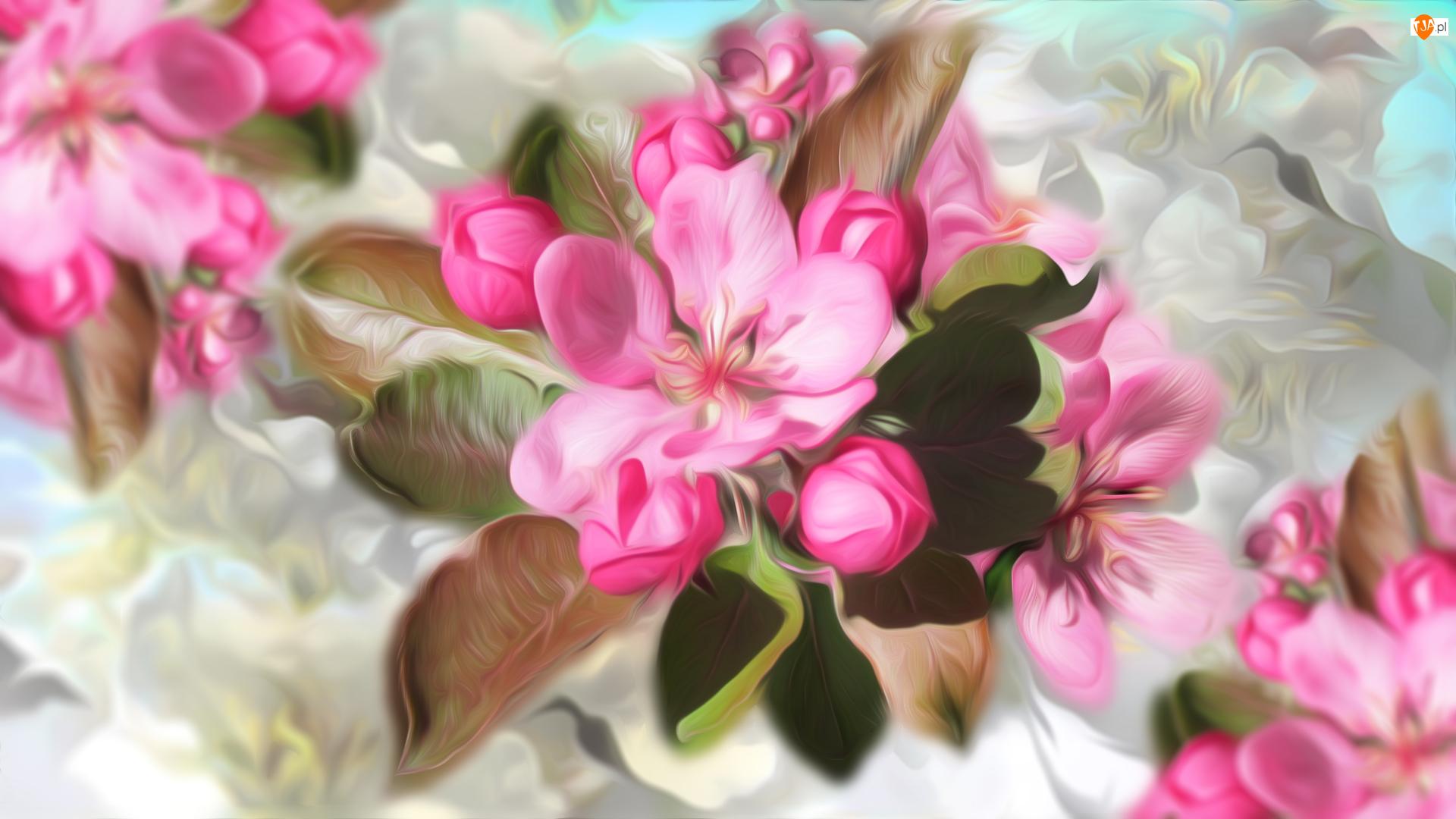 Grafika, Różowe, Kwiaty, Pąki