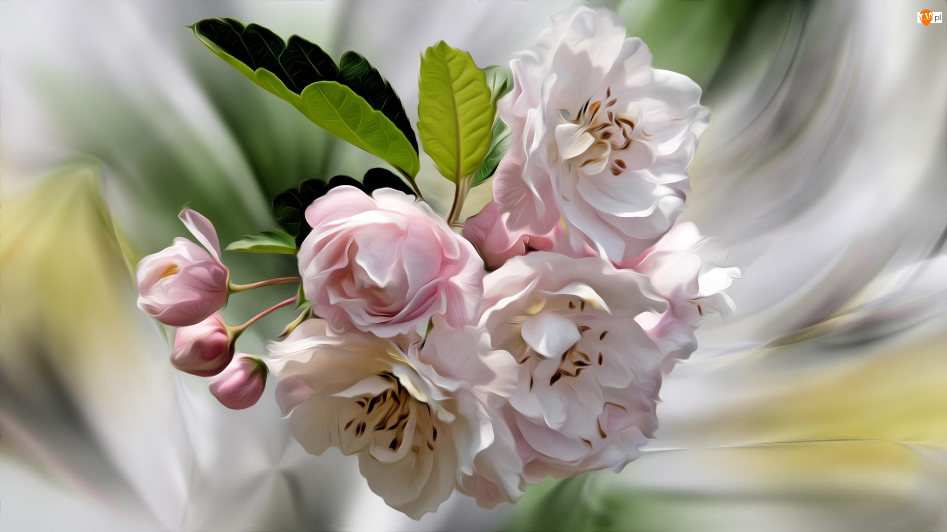 Gałązka, Grafika, Kwiaty