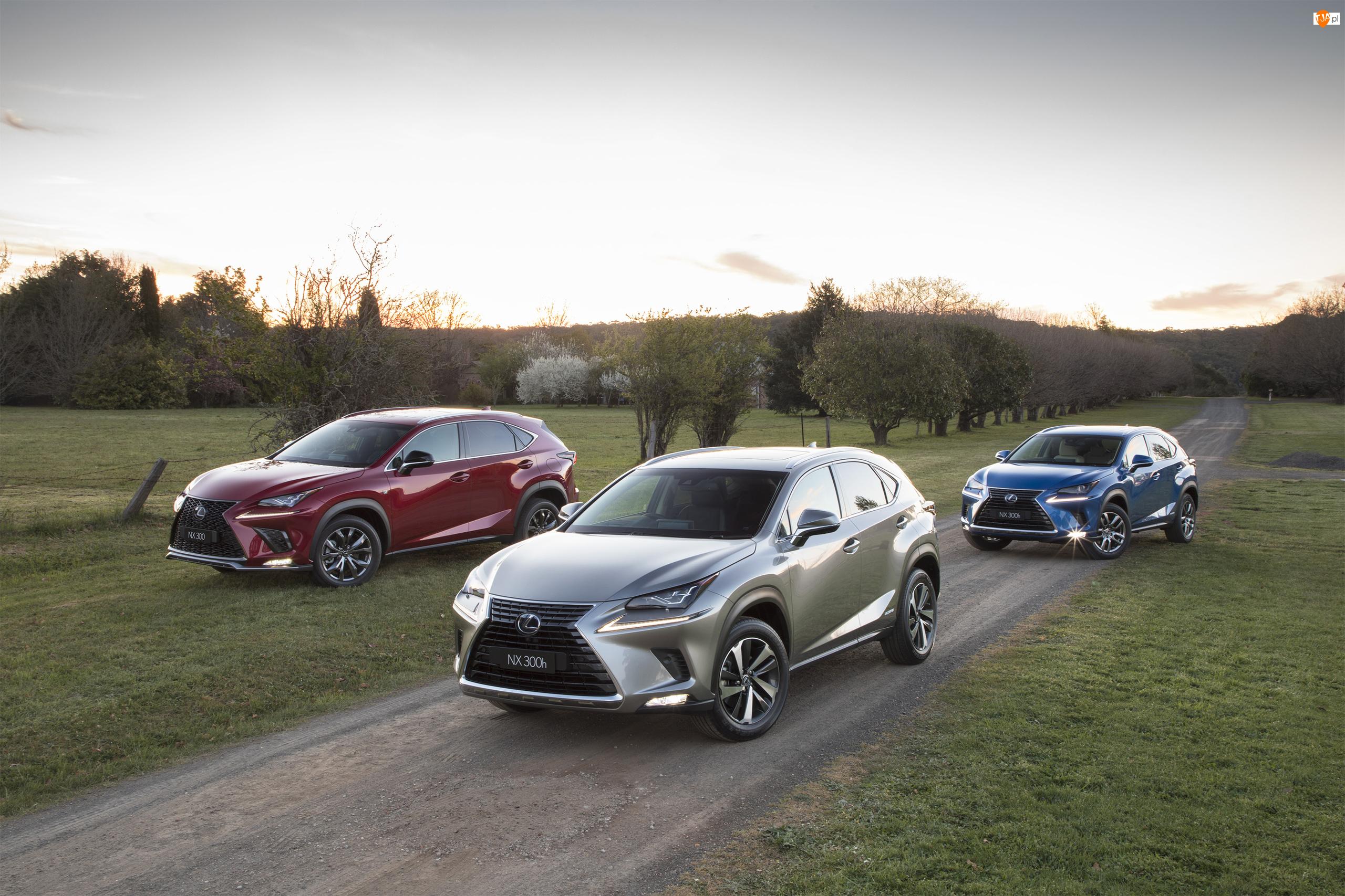 Lexus NX, Trzy, Samochody