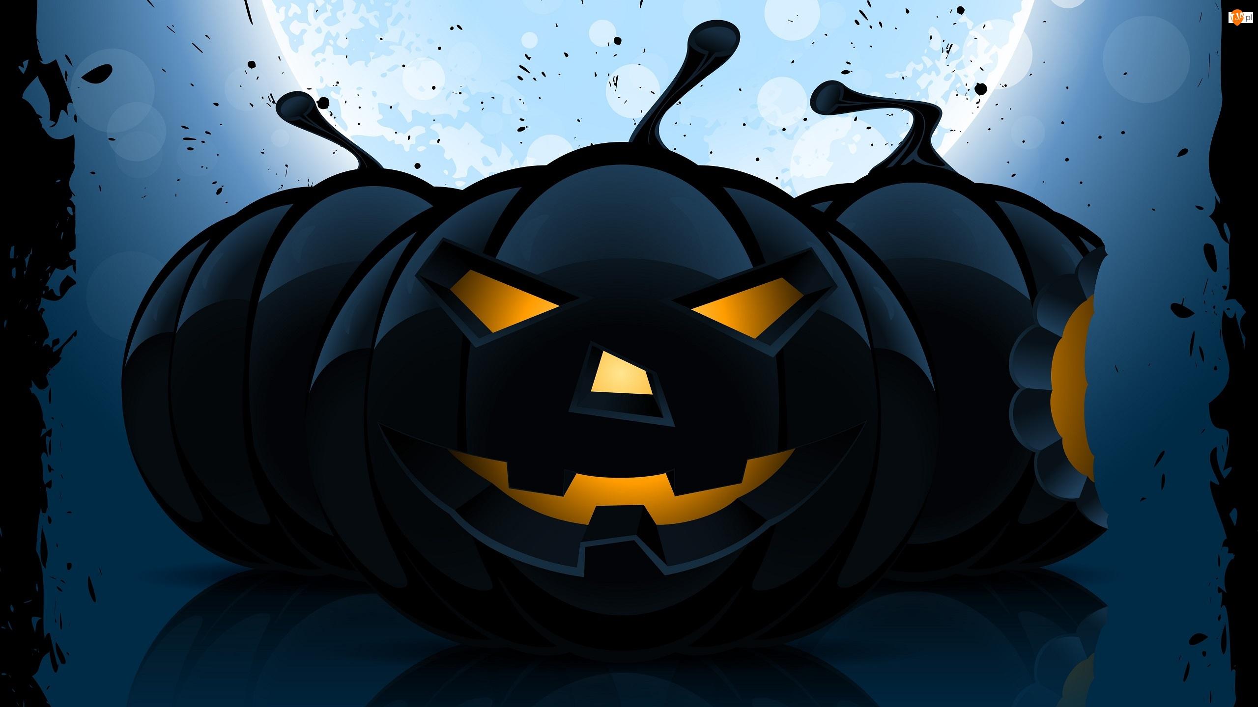 Dynie, Halloween, Trzy, Czarne