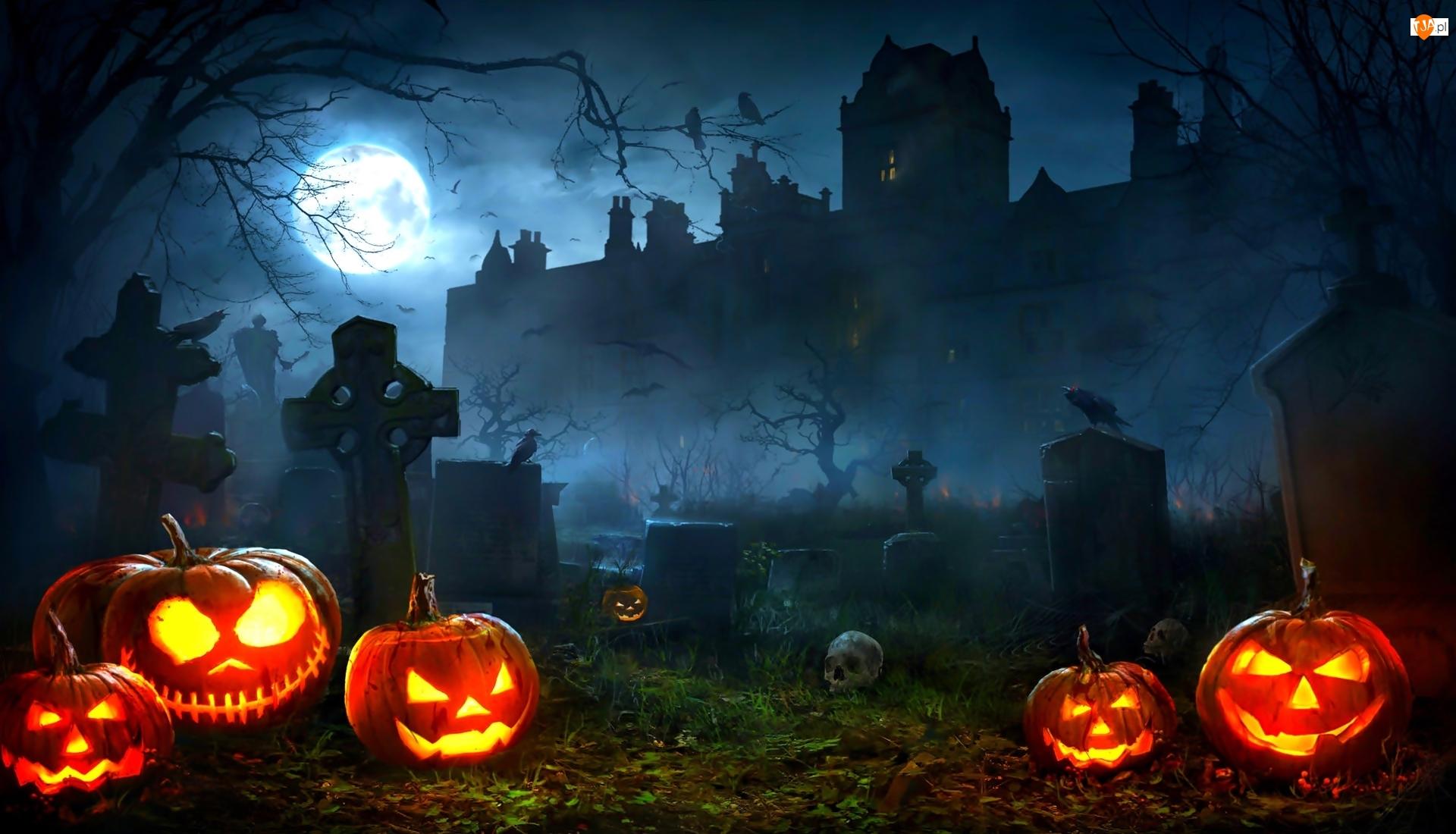 Cmentarz, Dynie, Księżyc, Halloween, Noc, Zamek, Mgła