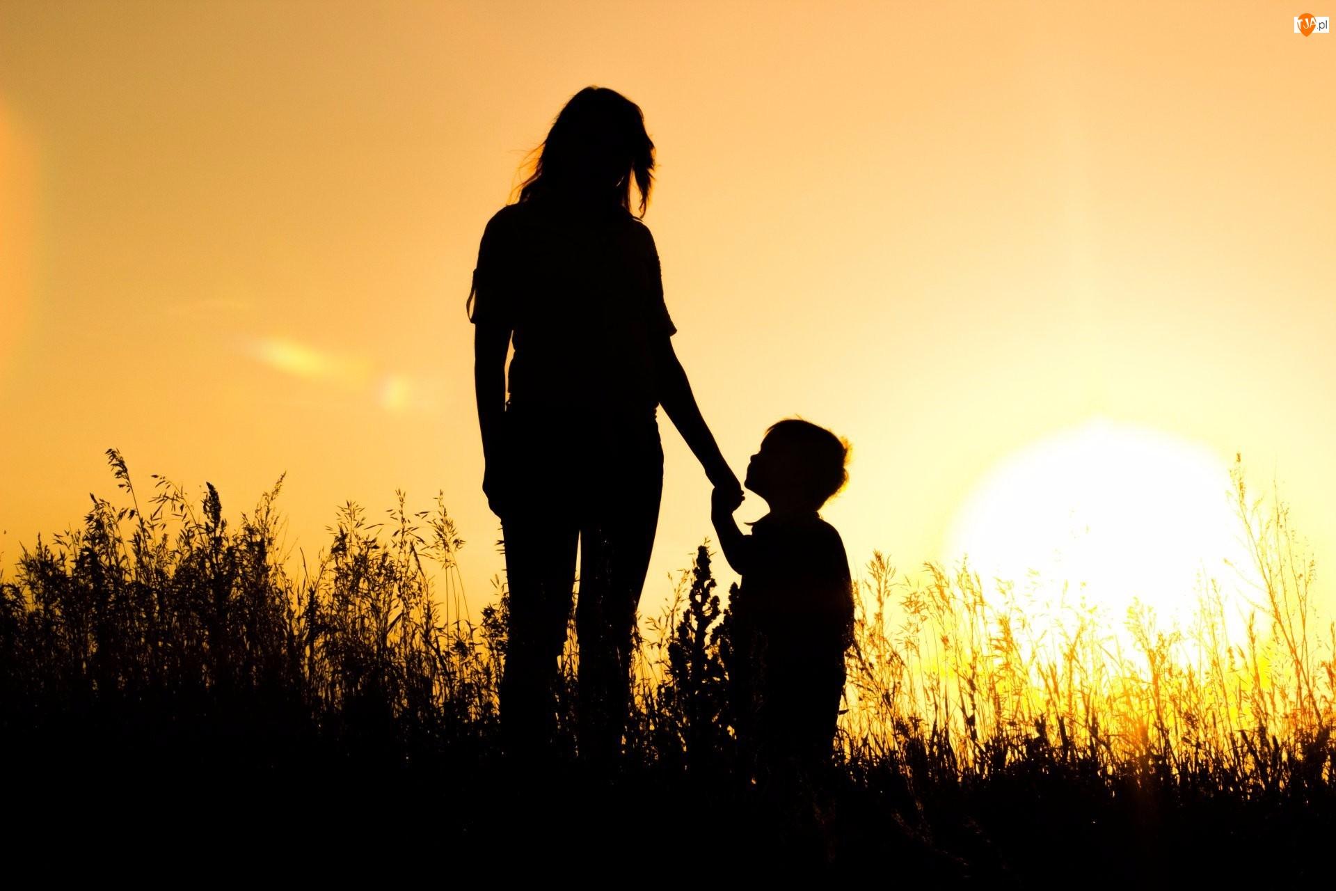 Kobieta, Łąka, Zachód słońca, Krajobraz, Dziecko