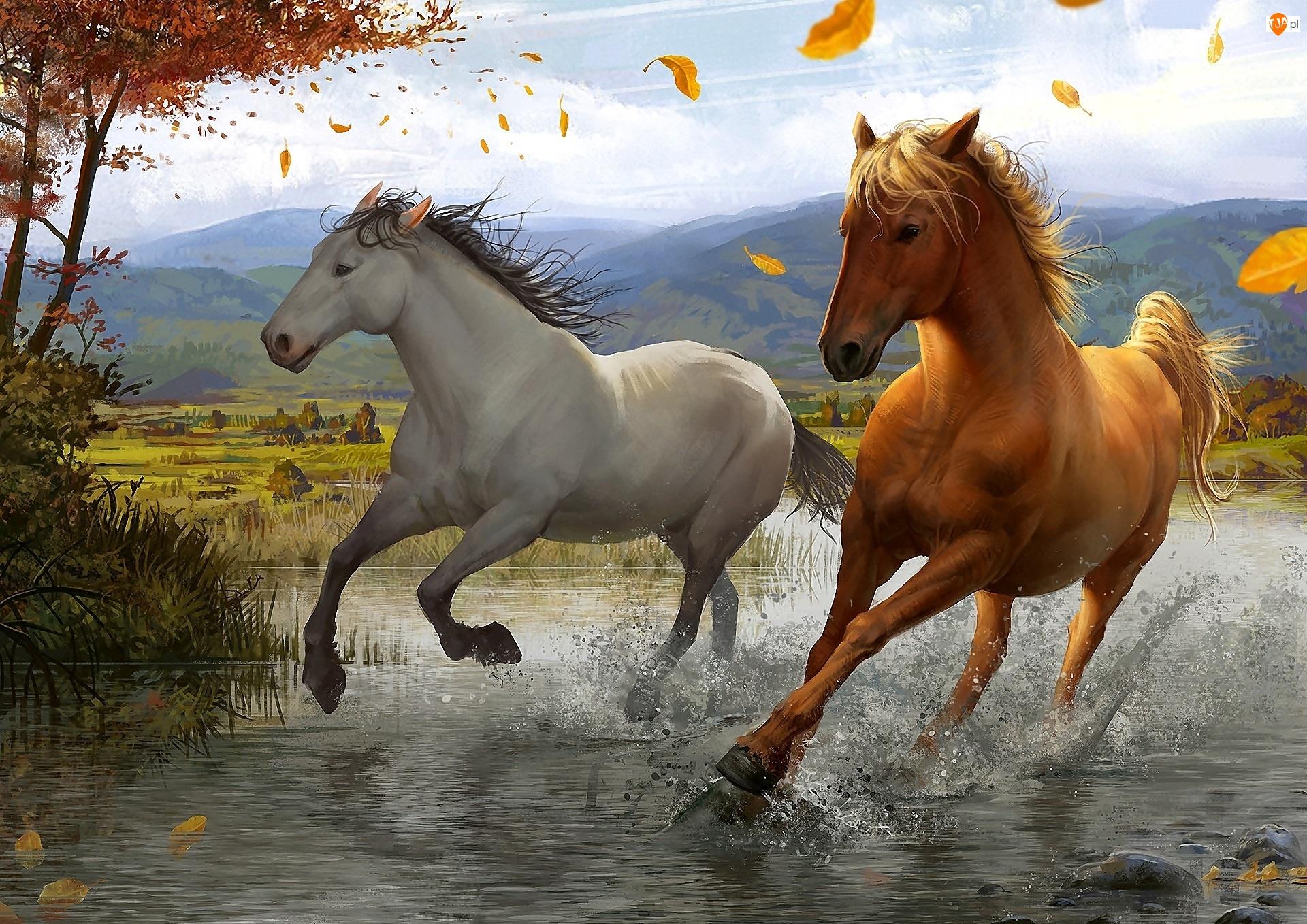 Rzeka, Malarstwo, Konie