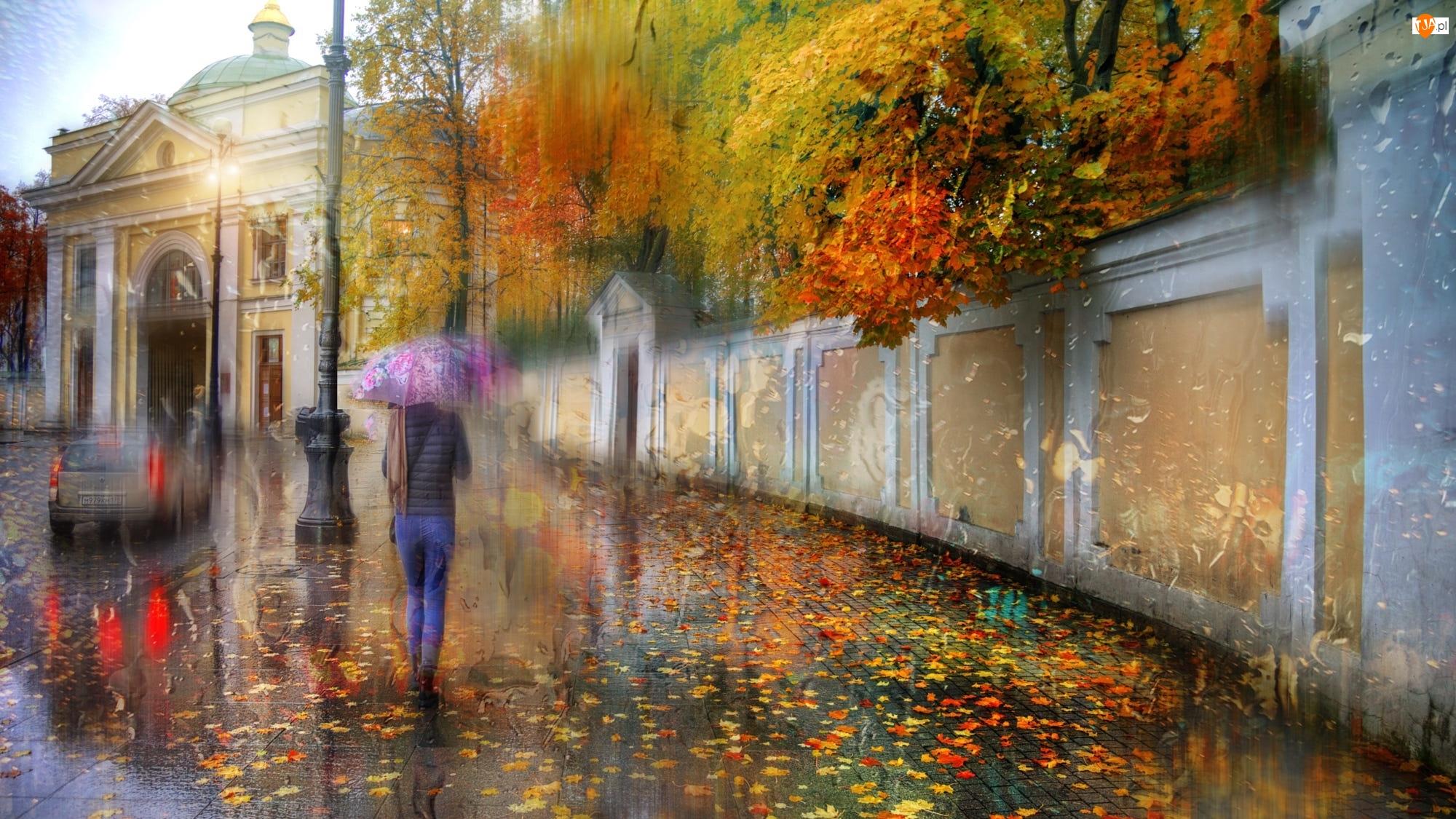 Budynek, Ulica, Kobieta, Deszcz, Mur, Parasolka