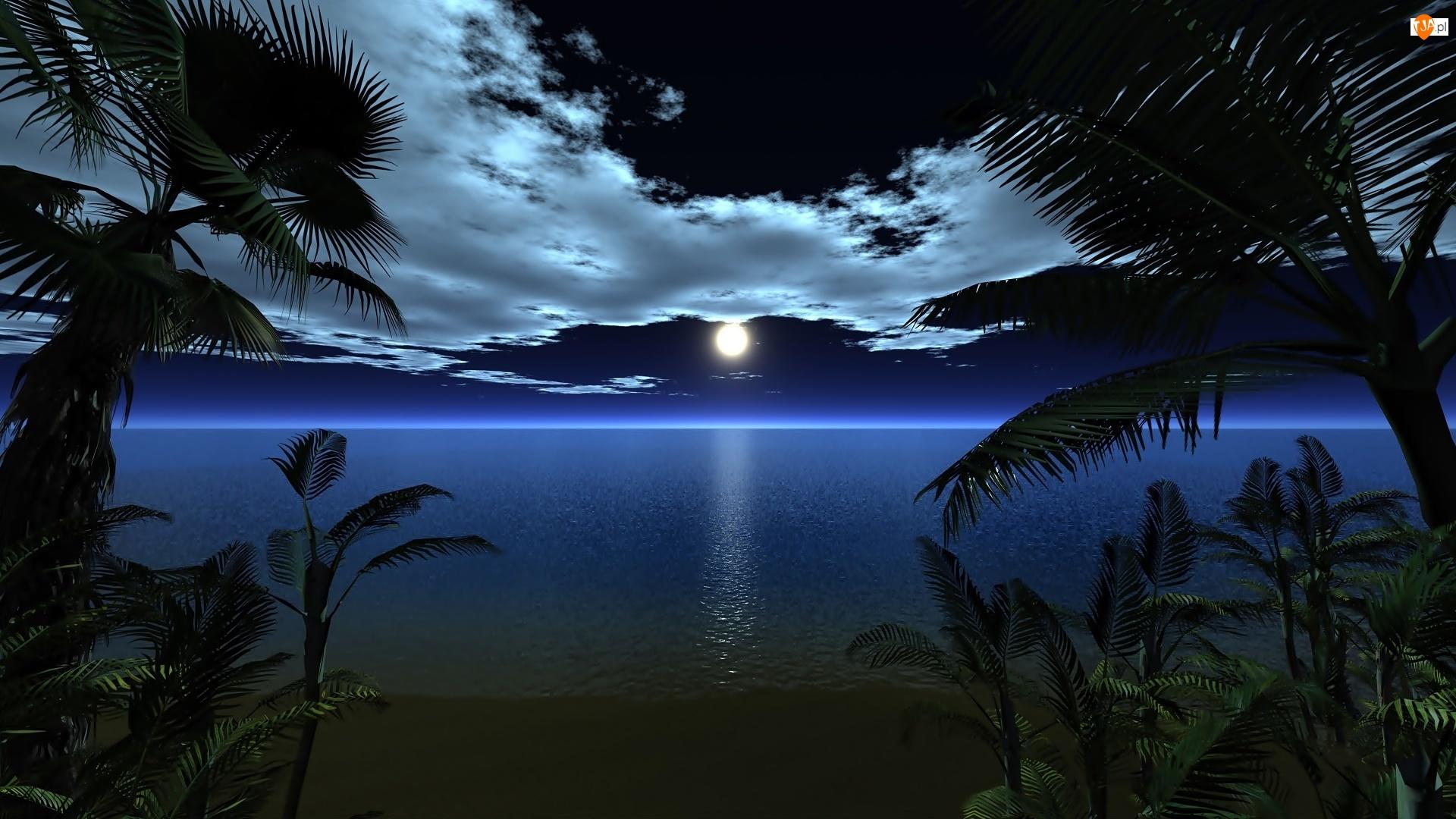 Ocean, Noc, Palmy, Plaża, Księżyc