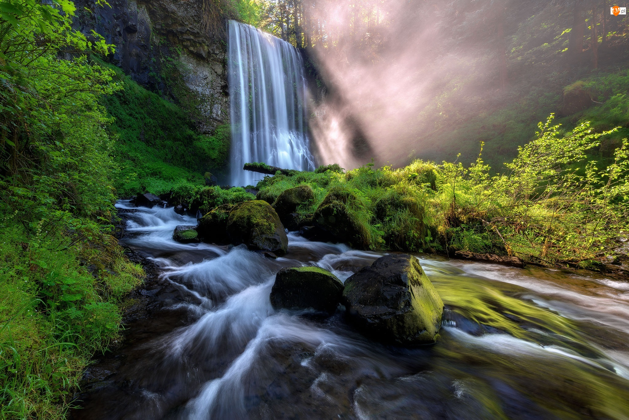 Skały, Rzeka Kolumbia, Kamienie, Drzewa, Roślinność, Wodospad, Hood River, Omszałe, Rezerwat przyrody Columbia River Gorge, Stan Oregon, Stany Zjednoczone, Las