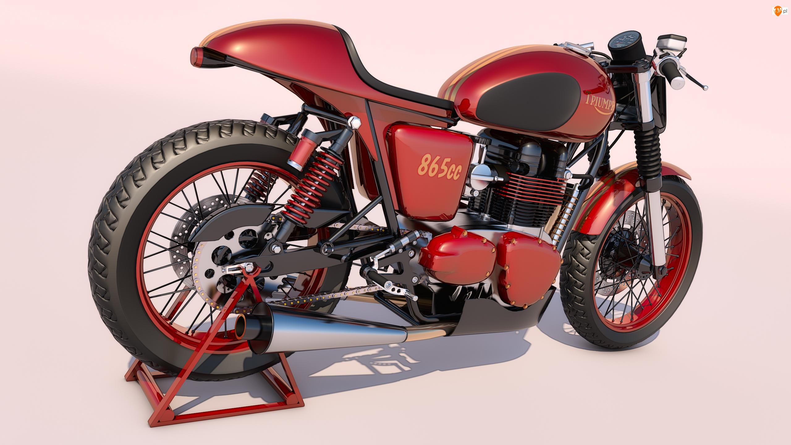 Grafika, Motocykl, Triumph Thruxton