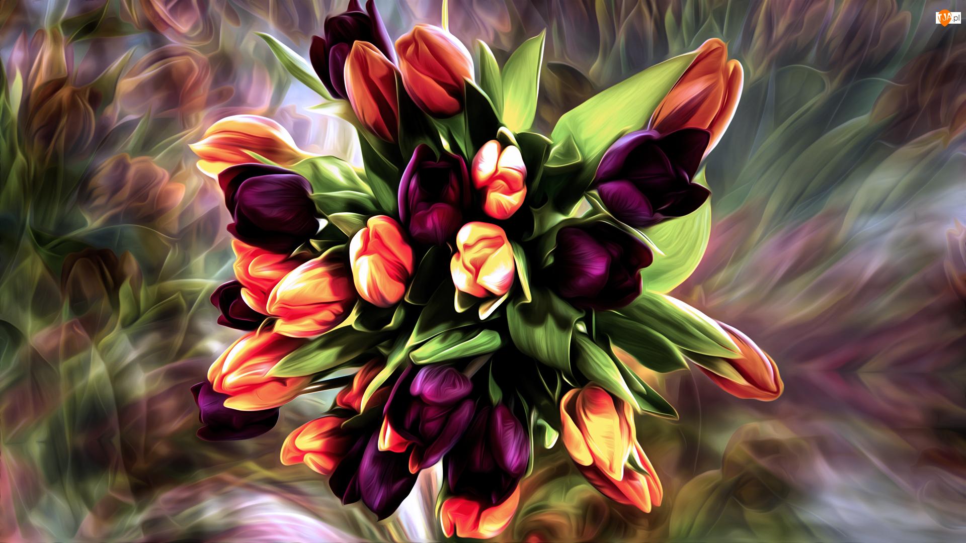 Grafika, Tulipany, Bukiet