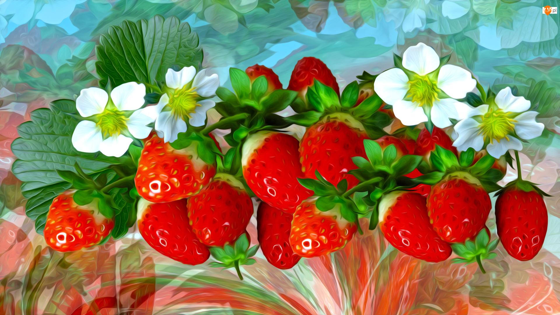 Kwiaty, Grafika, Truskawki