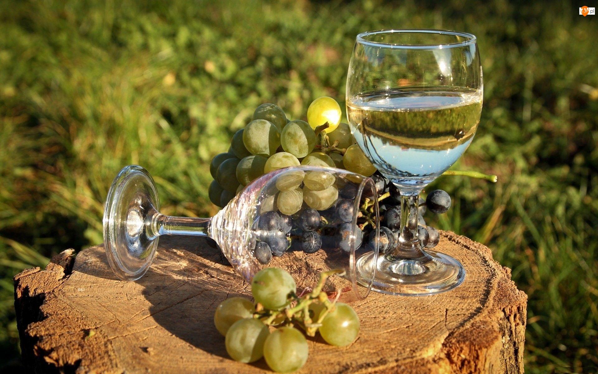 Kieliszki, Winogrono, Wino, Białe, Pień