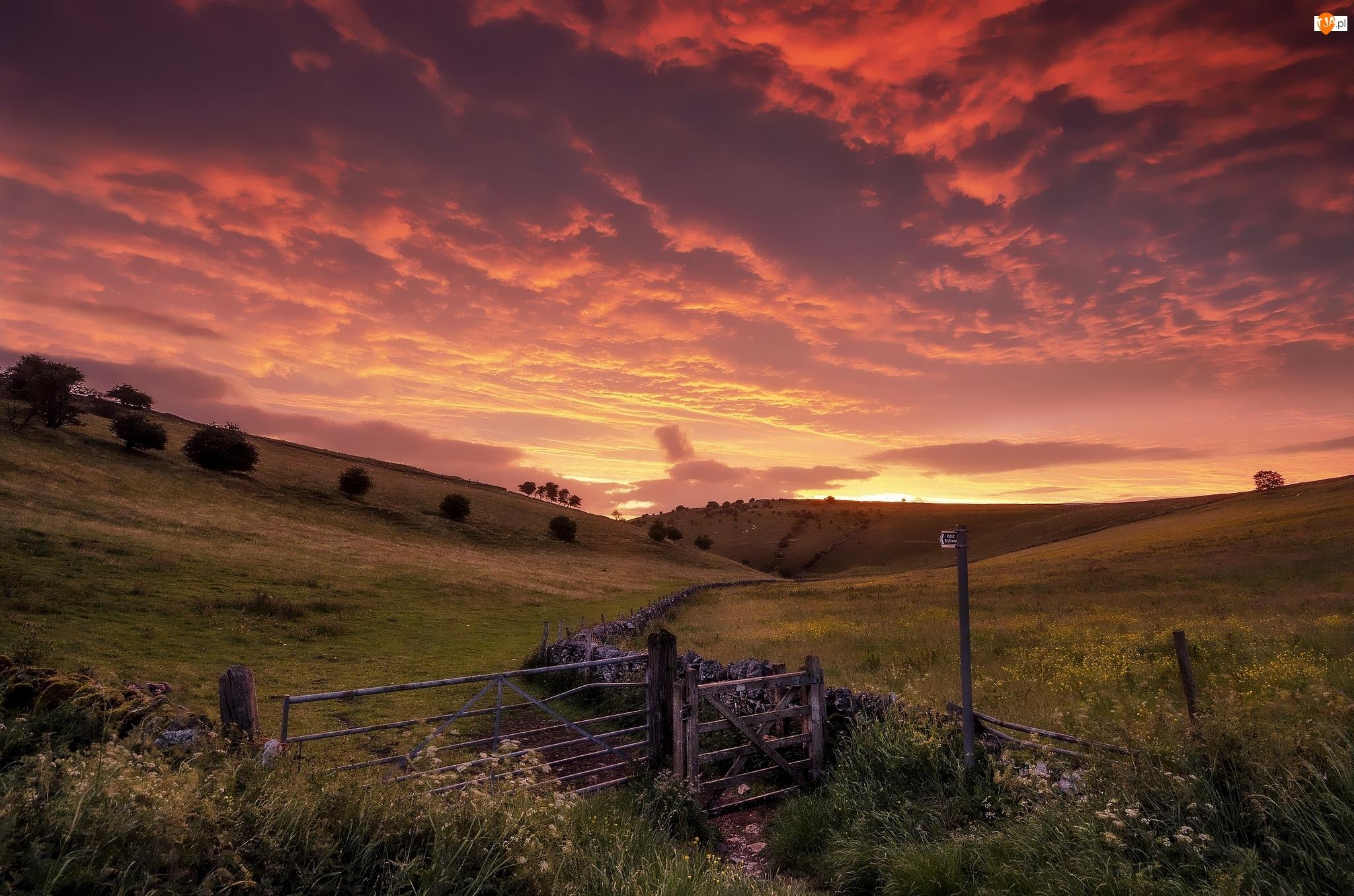 Anglia, Park Narodowy Peak District, Wschód słońca, Drzewa, Wzgórza, Ogrodzenie