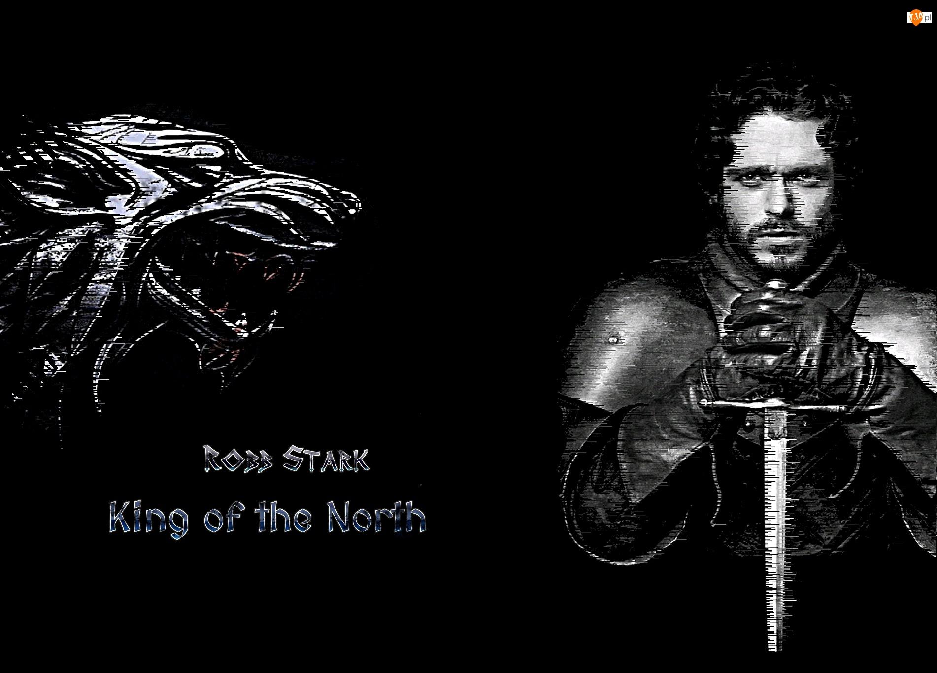 Wilk, Gra o tron, Game of Thrones, Robb Stark