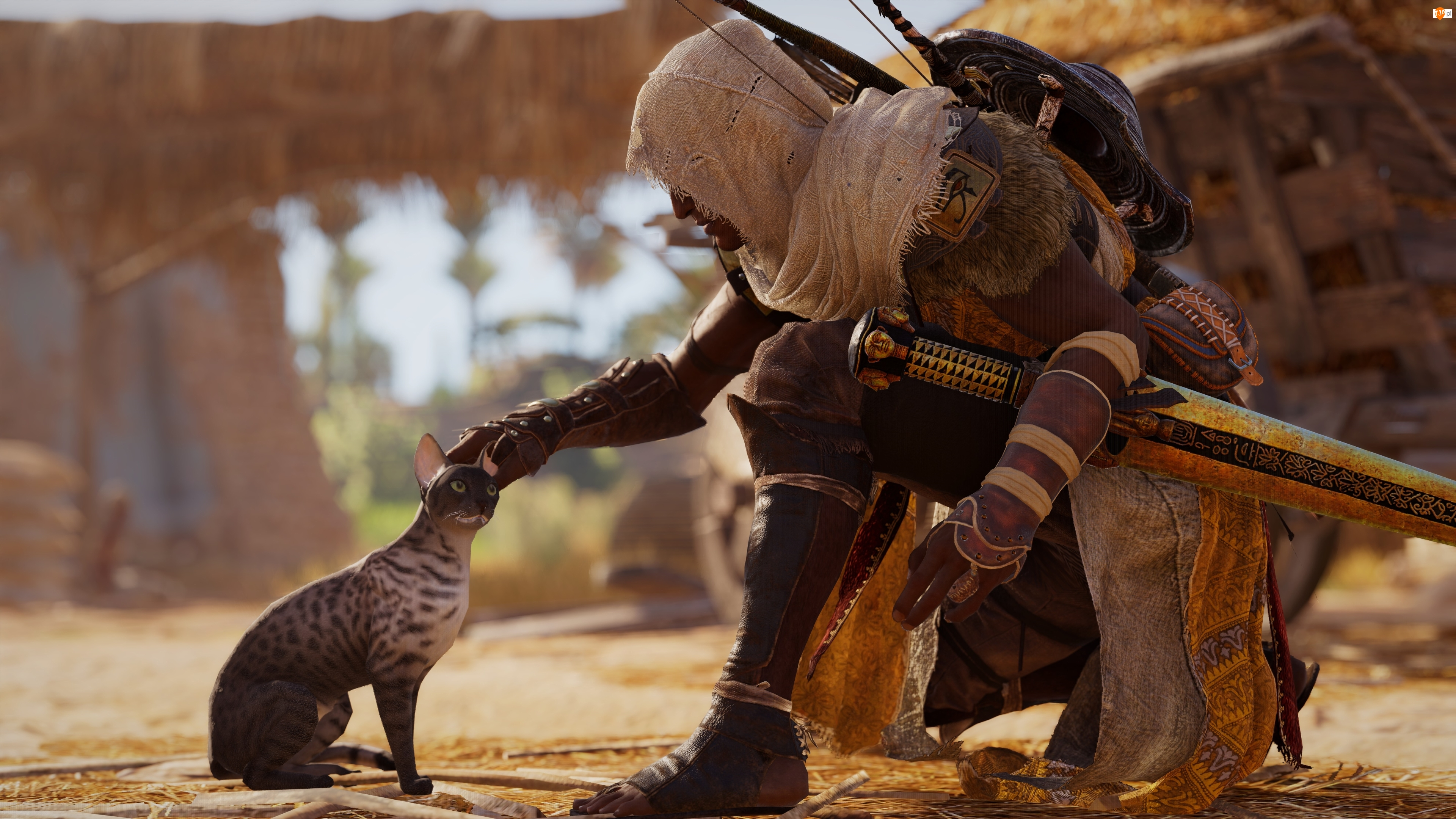 Kot, Assassins Creed Origins, Bayek