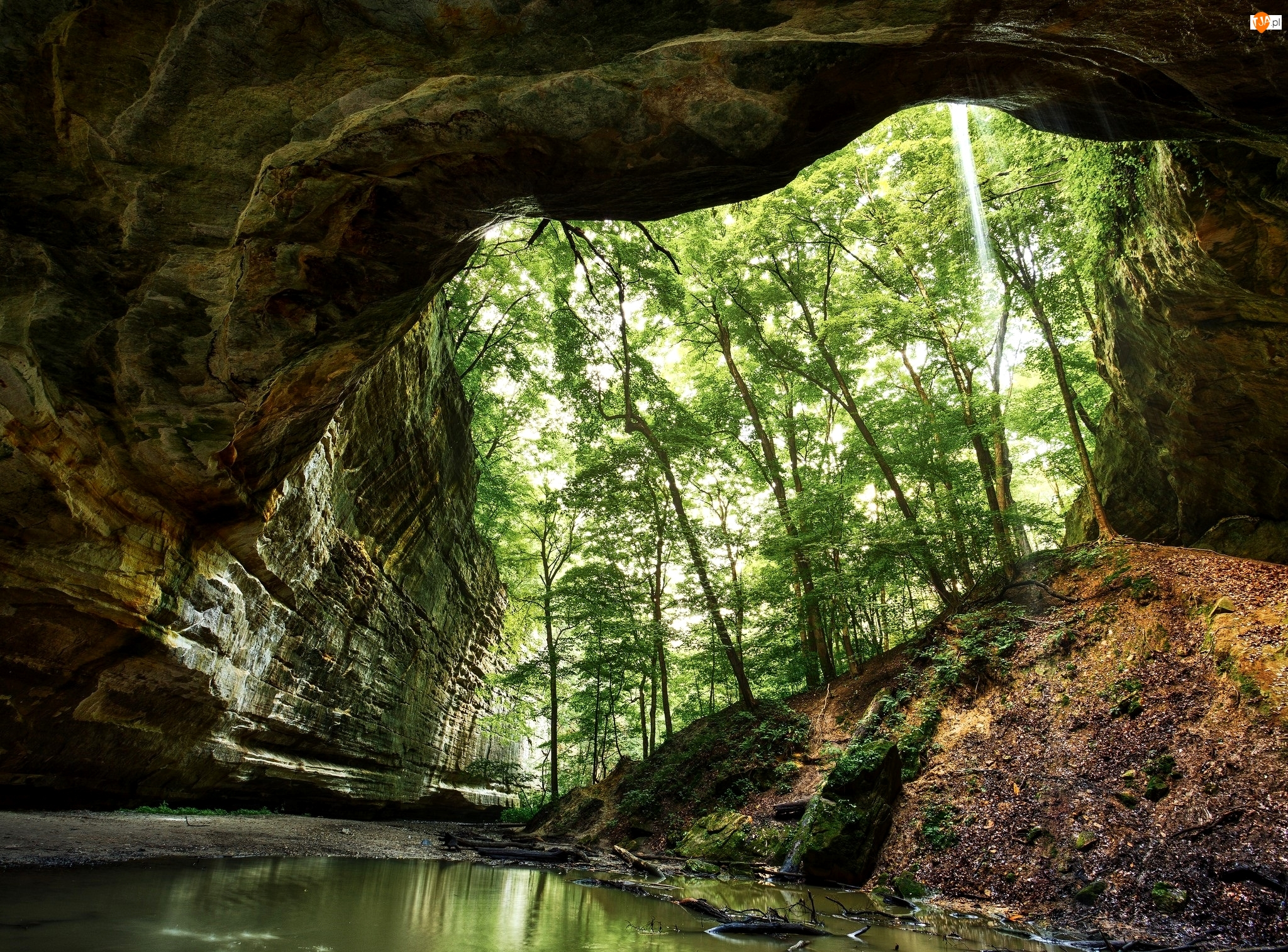 Kanion, Park stanowy Starved Rock, Drzewa, Stany Zjednoczone, Skały, Stan Illinois