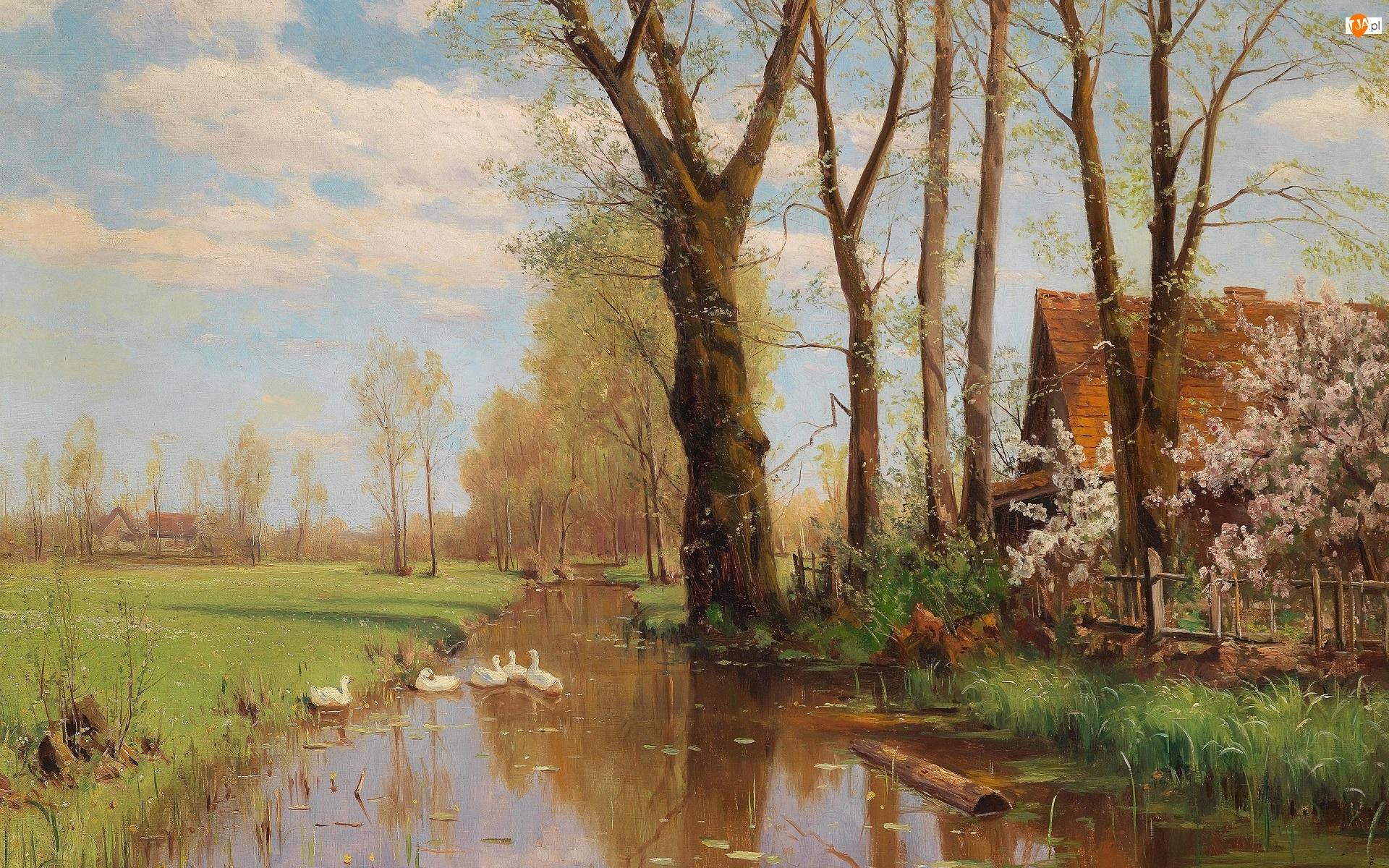 Obraz, Walter Moras, Drzewa, Malarstwo, Kaczki, Rzeka, Domy
