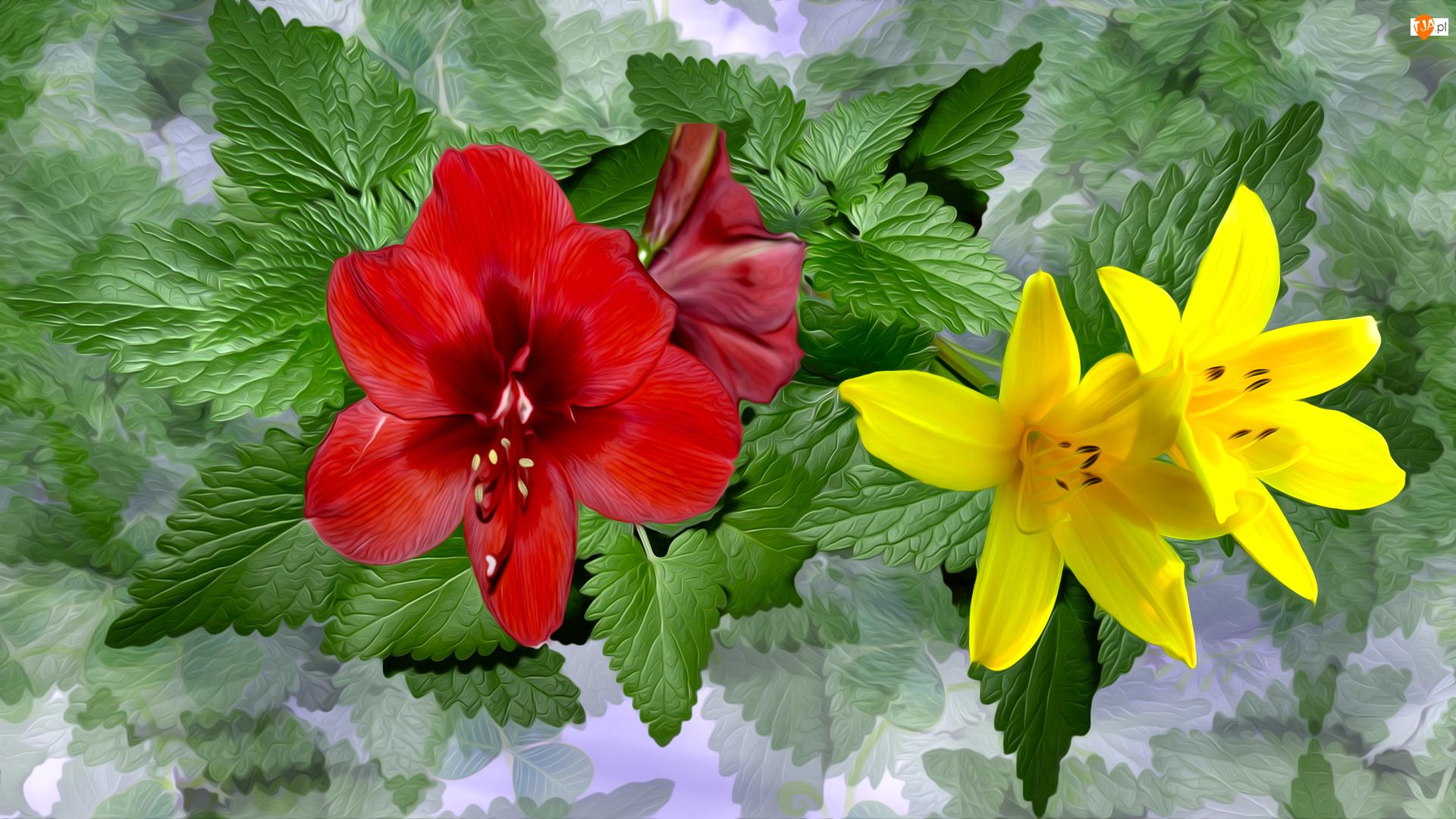 Kwiaty, Czerwone, Mięta, Grafika, Listki, Lilie, Żółte