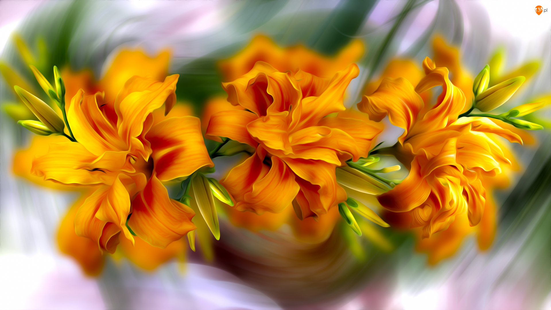 Grafika, Kwiaty, Pomarańczowe, Lilie