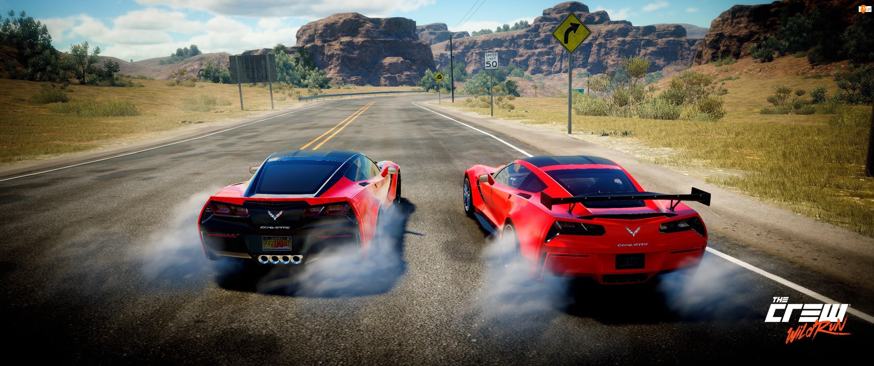 Samochody, Gra, The Crew Wild Run, Droga