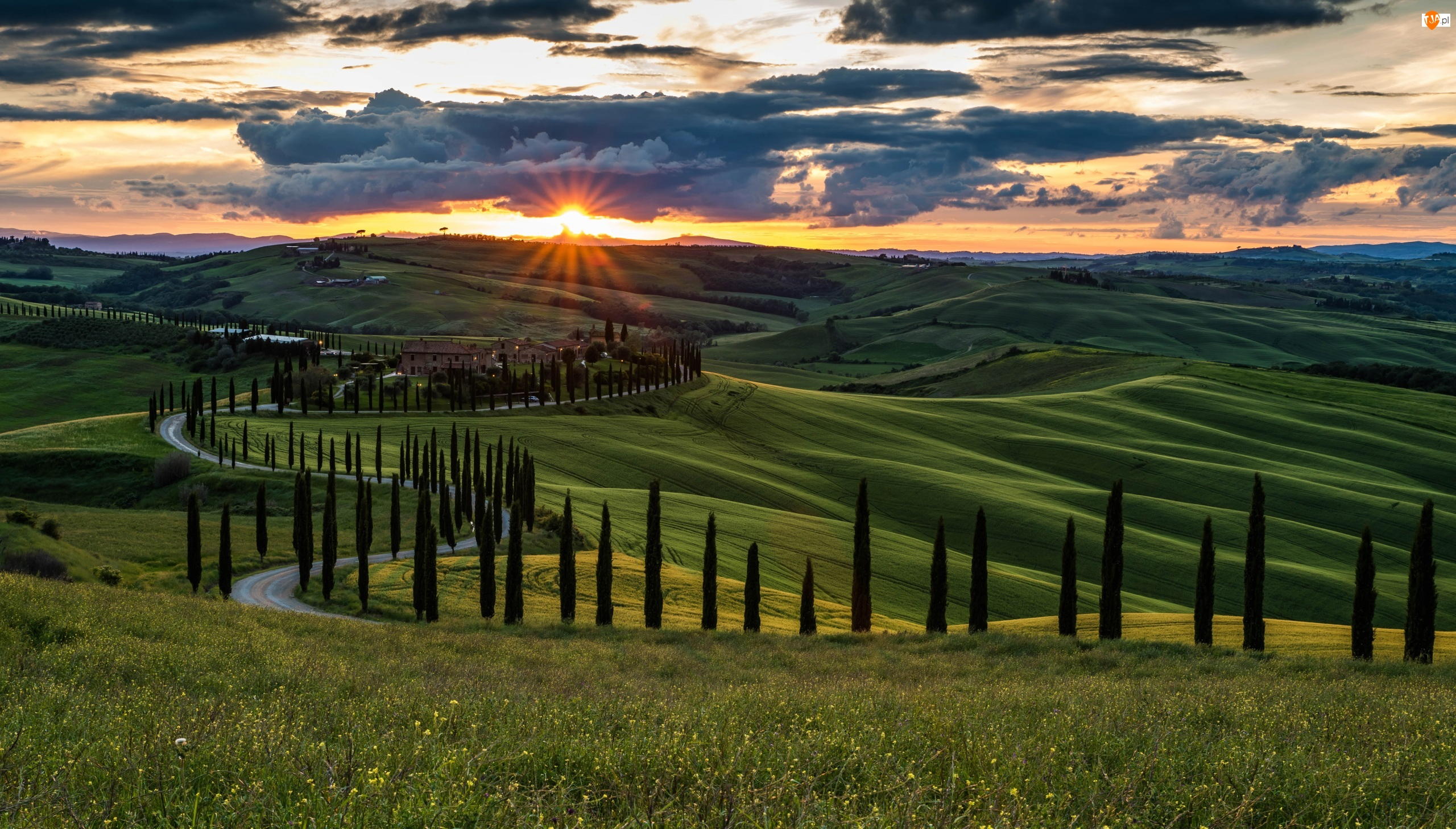 Chmury, Toskania, Wschód słońca, Droga, Cyprysy, Wzgórza, Drzewa, Włochy, Domy