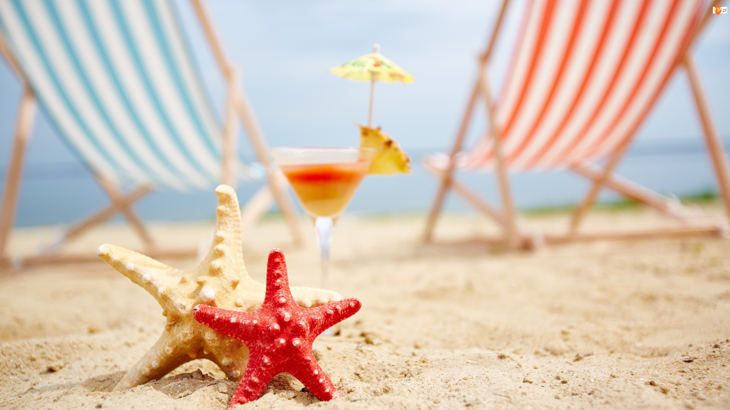 Leżaki, Plaża, Drink, Rozgwiazdy, Piasek