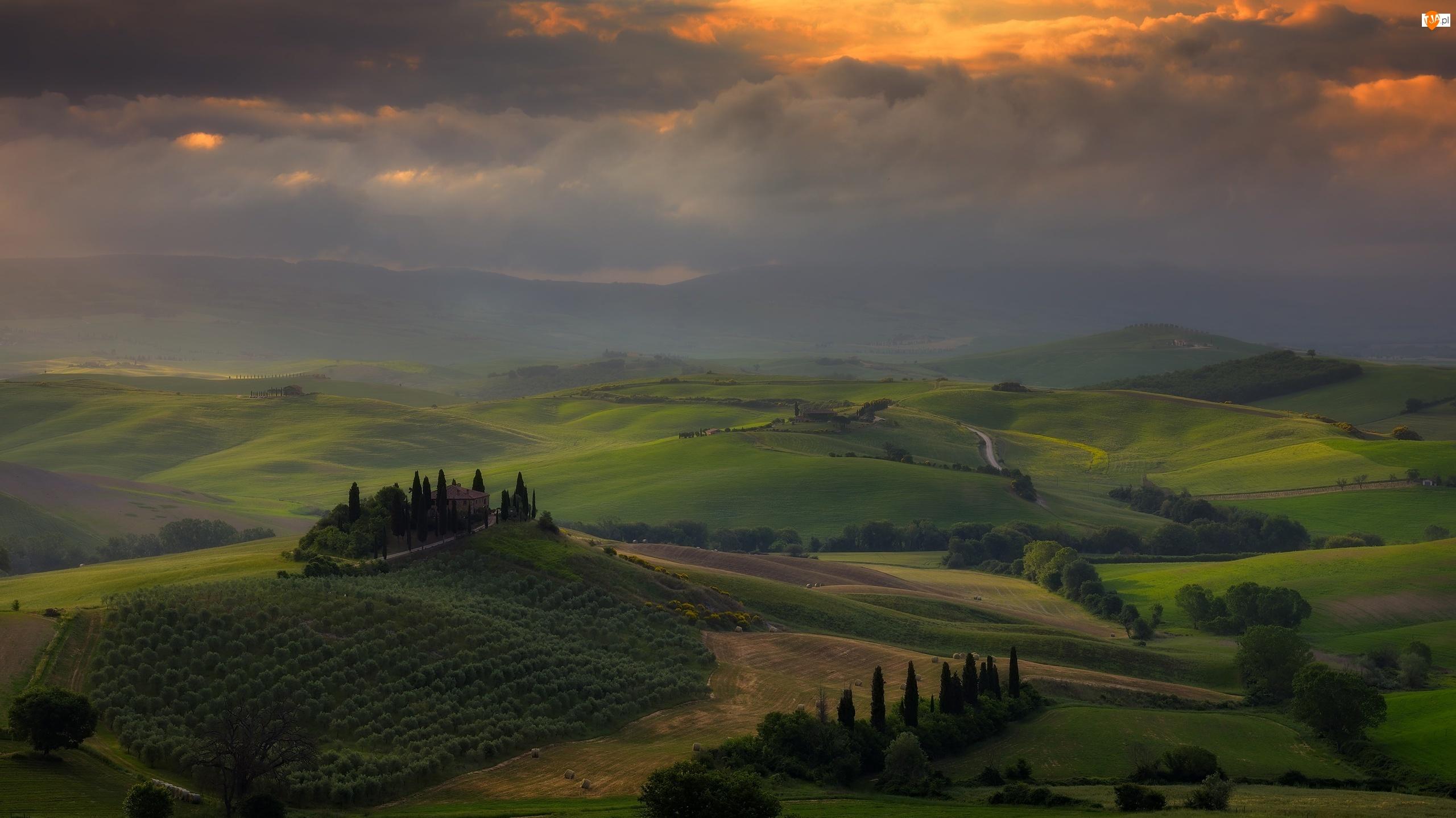 Mgła, Toskania, Chmury, Drzewa, Cyprysy, Region Chianti, Pola, Włochy, Wzgórza