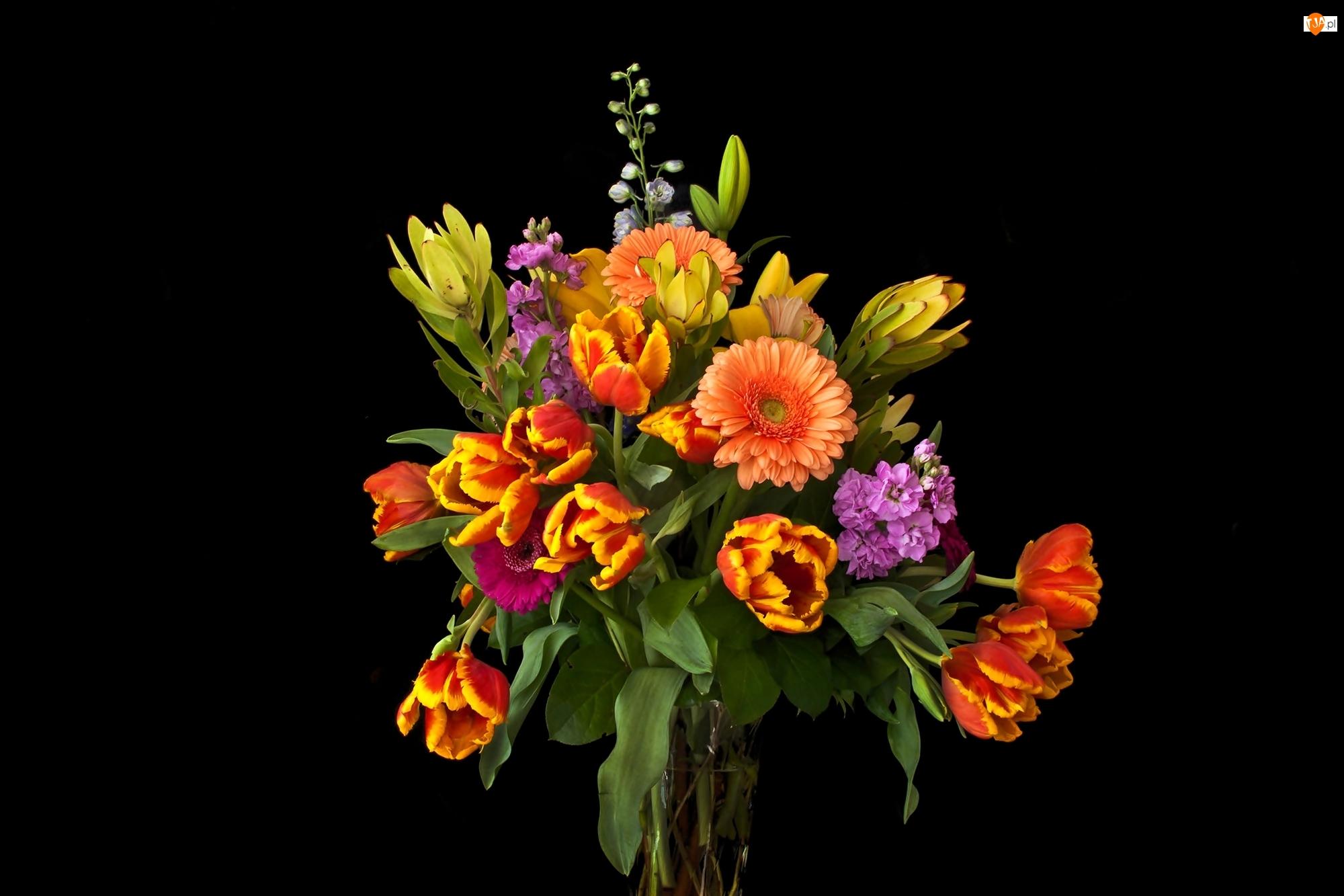 Tulipany, Bukiet, Wazon, Gerbery
