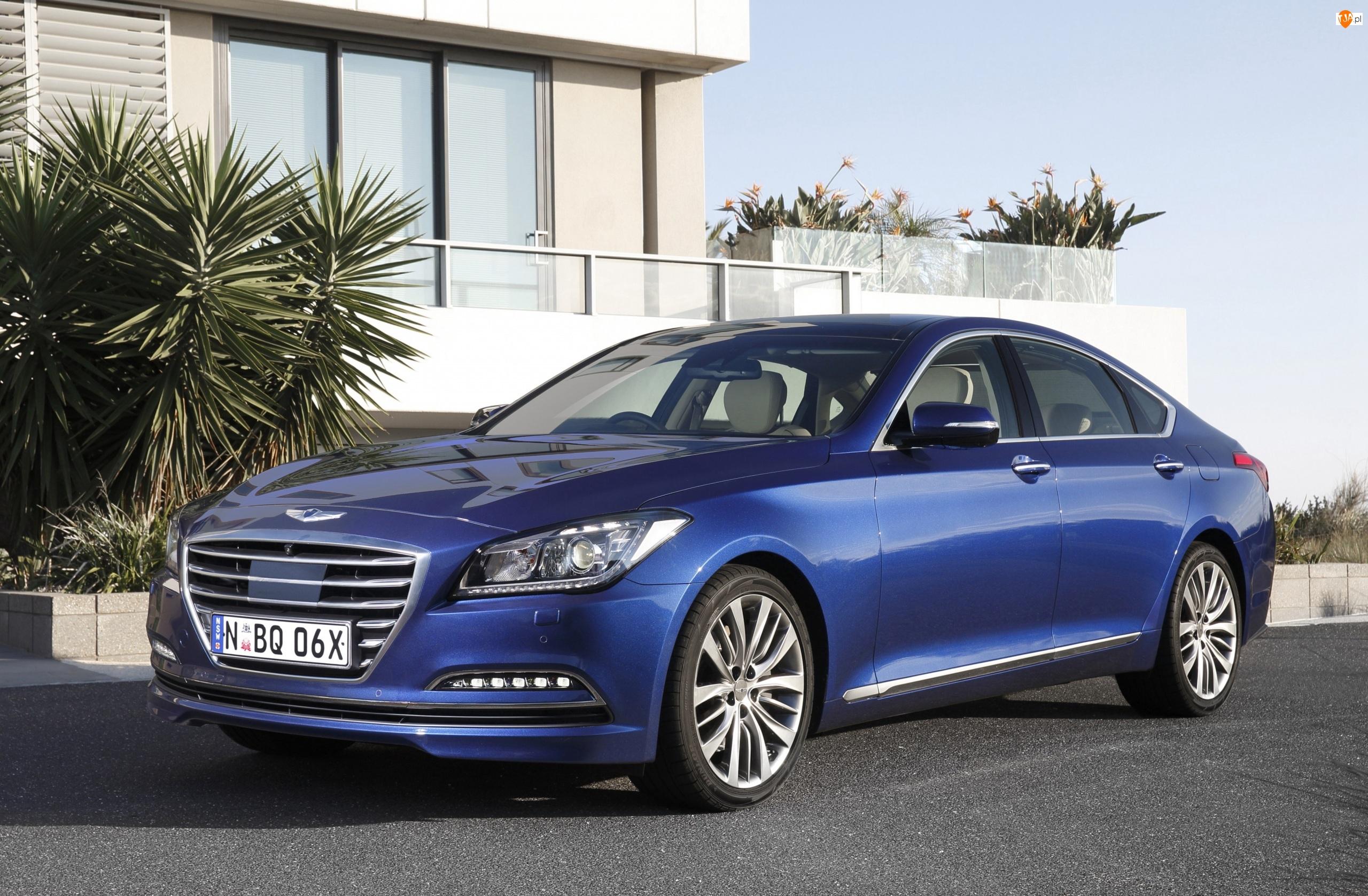 Hyundai Genesis II, Niebieski