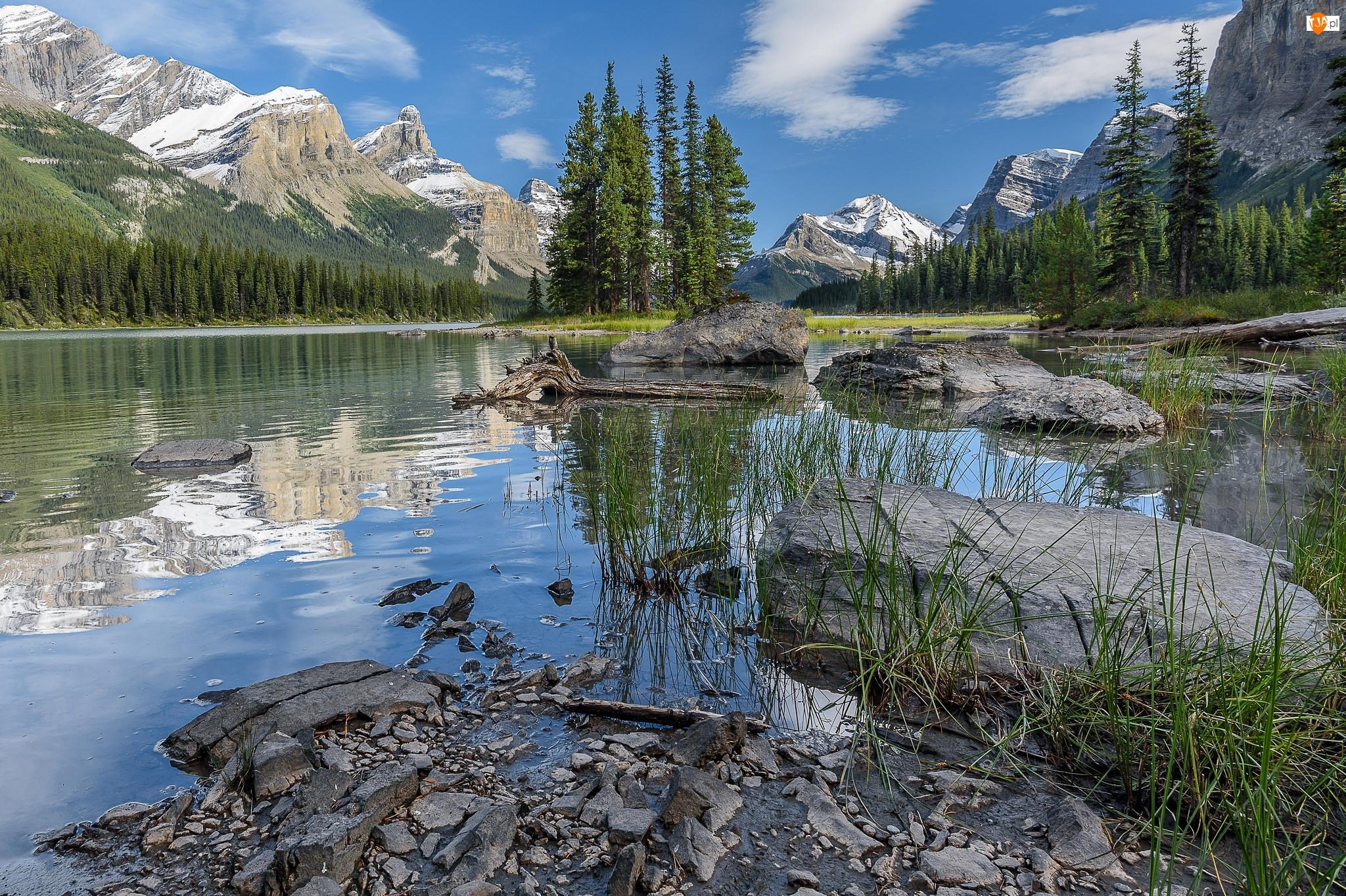 Park Narodowy Jasper, Góry, Skały, Kanada, Drzewa, Wyspa Spirit Island, Jezioro Maligne Lake