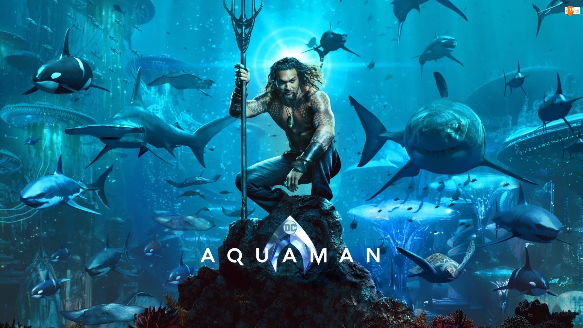 Jason Momoa, Film, Aquaman, Aktor