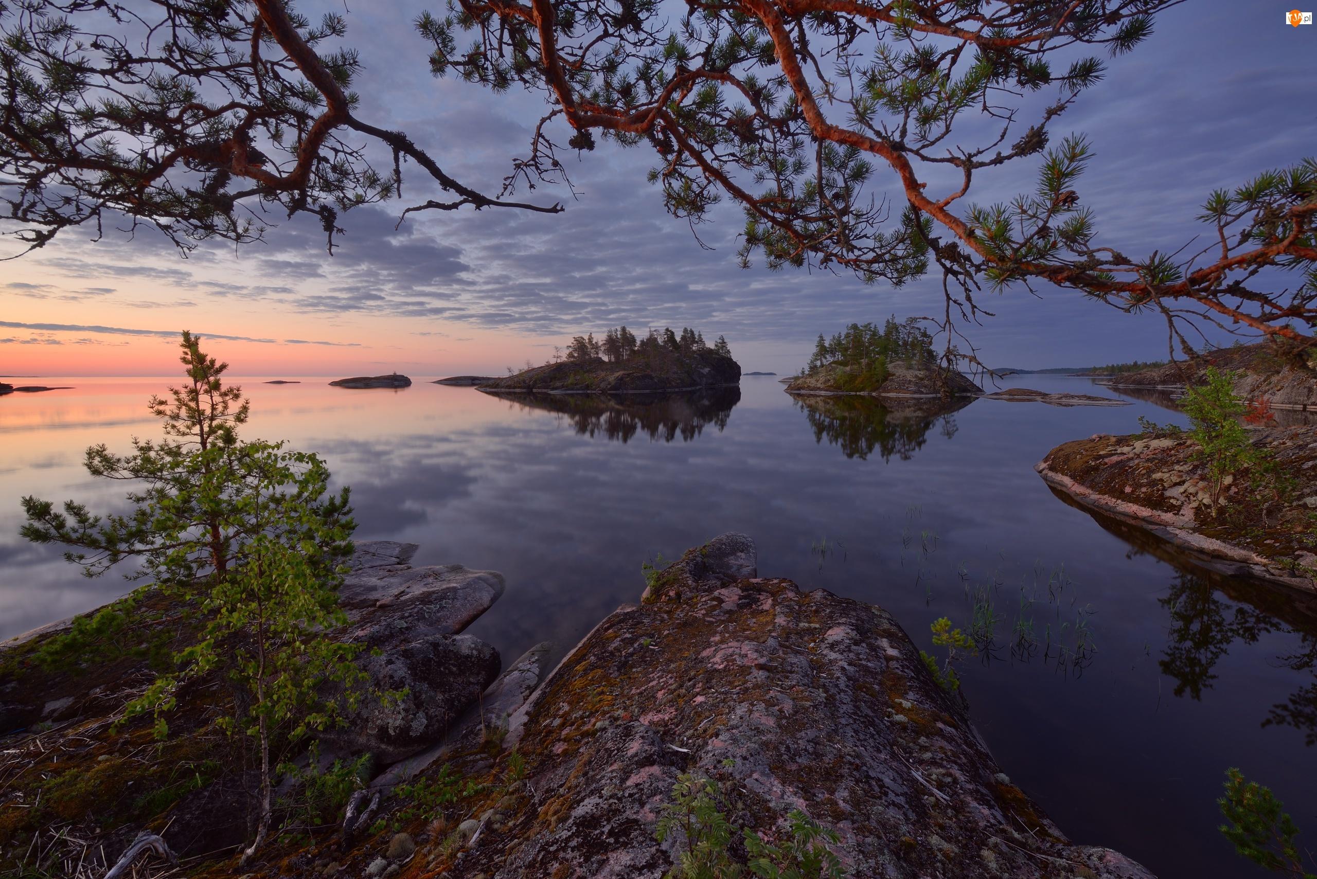 Karelia, Rosja, Wschód słońca, Jezioro Ładoga, Wysepki, Skały, Drzewa